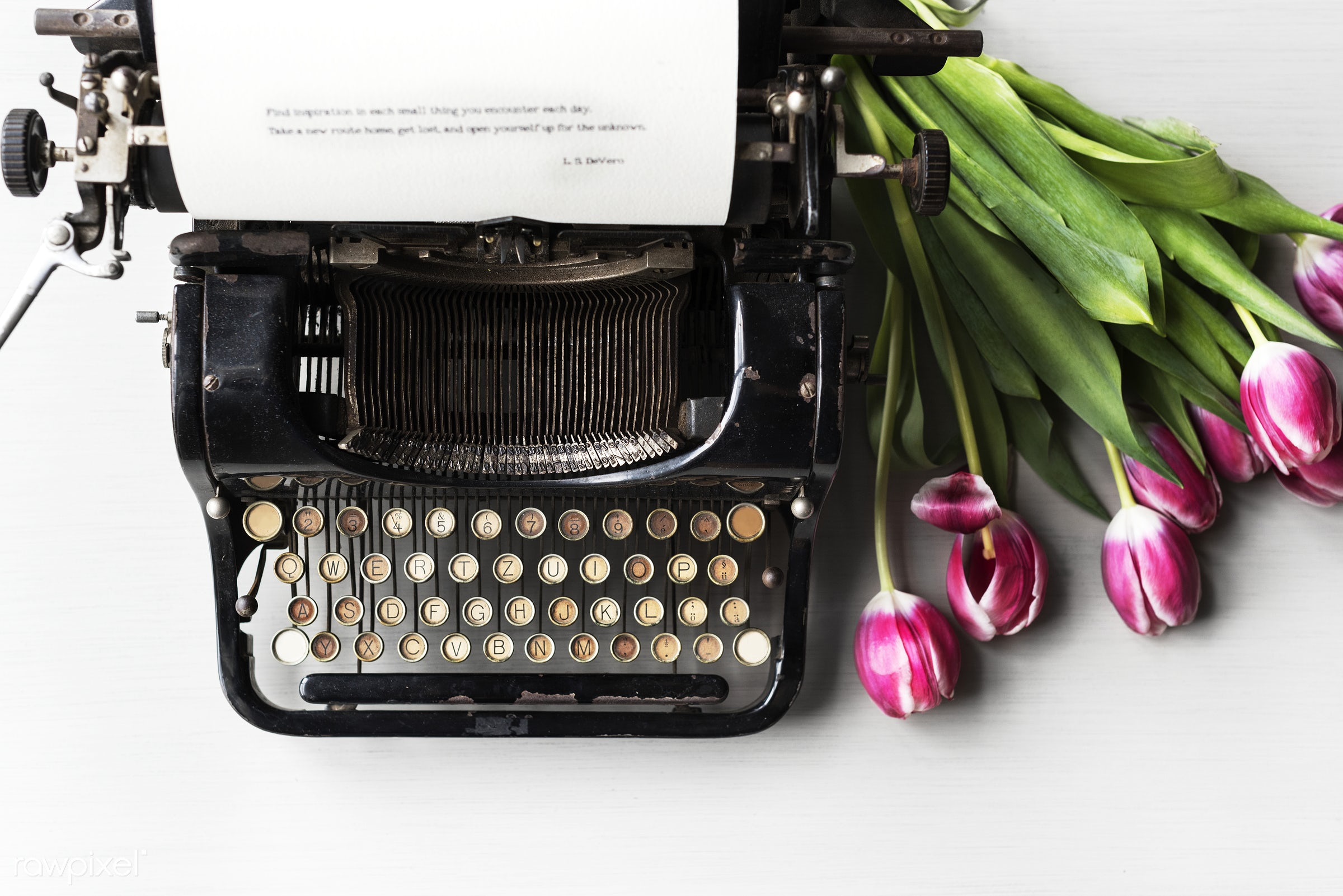nobody, old, paper, data, typescript, retro, tulips, type, author, story, document, ancient, style, old fashion, typewriter...