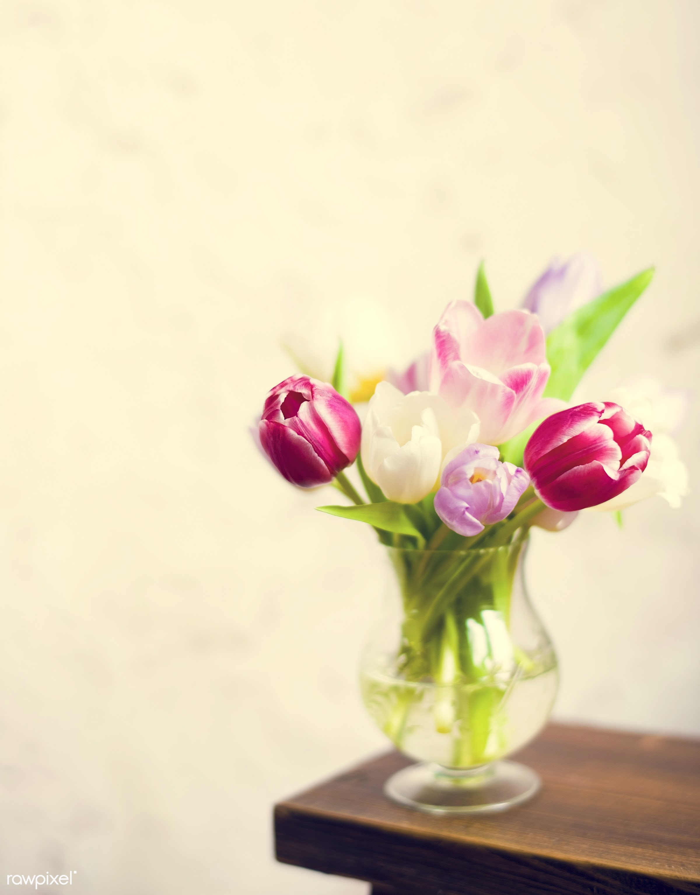 festive, nobody, detail, decorative, colorful, events, plants, tulips, spring, blossom, decor, nature, fresh, attractive,...