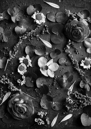 Rustic decorative flowers and leaves