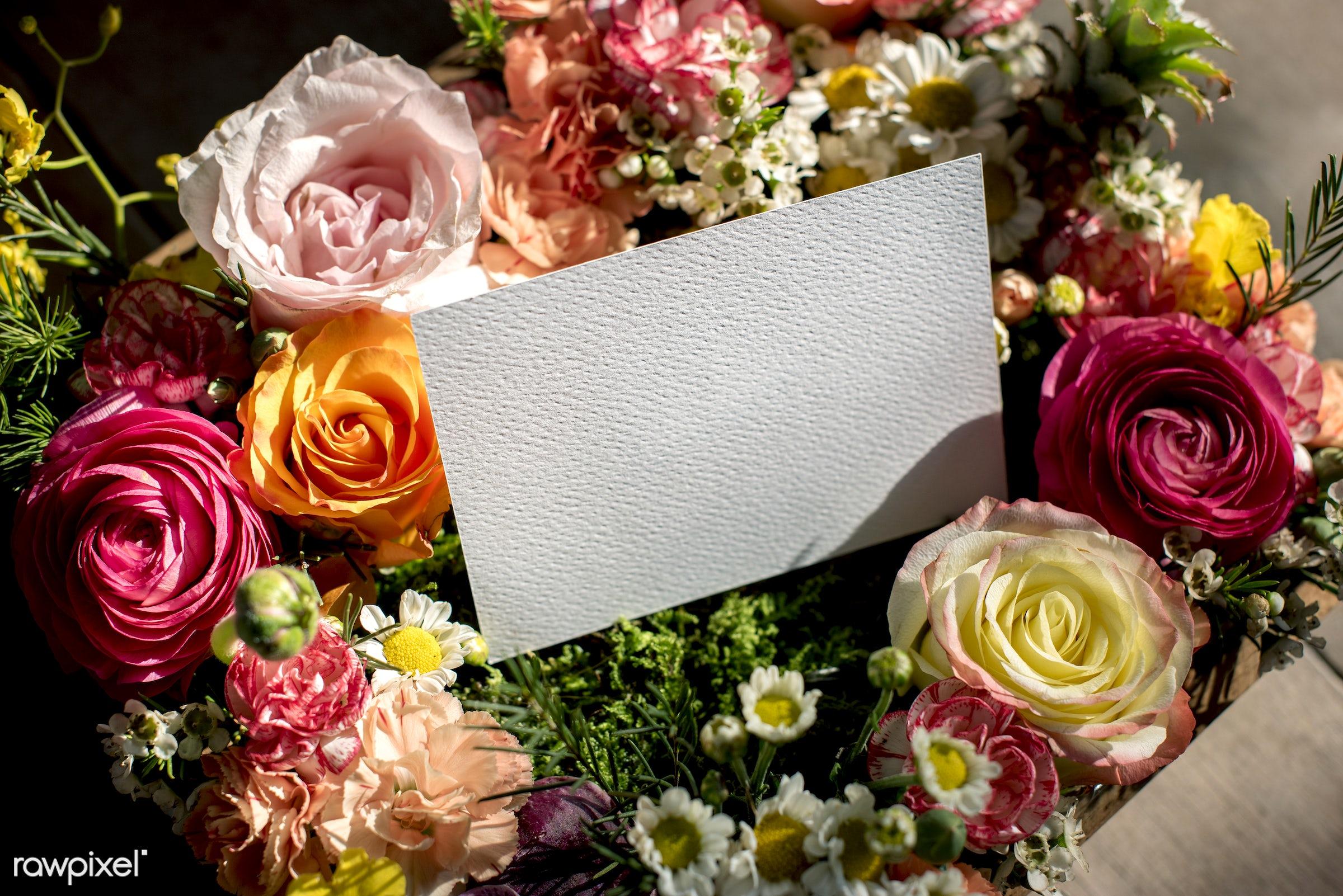 plant, bouquet, shop, concept, decorative, botany, leaf, romance, blossom, decor, fresh, card, bunch, flowers, creating,...