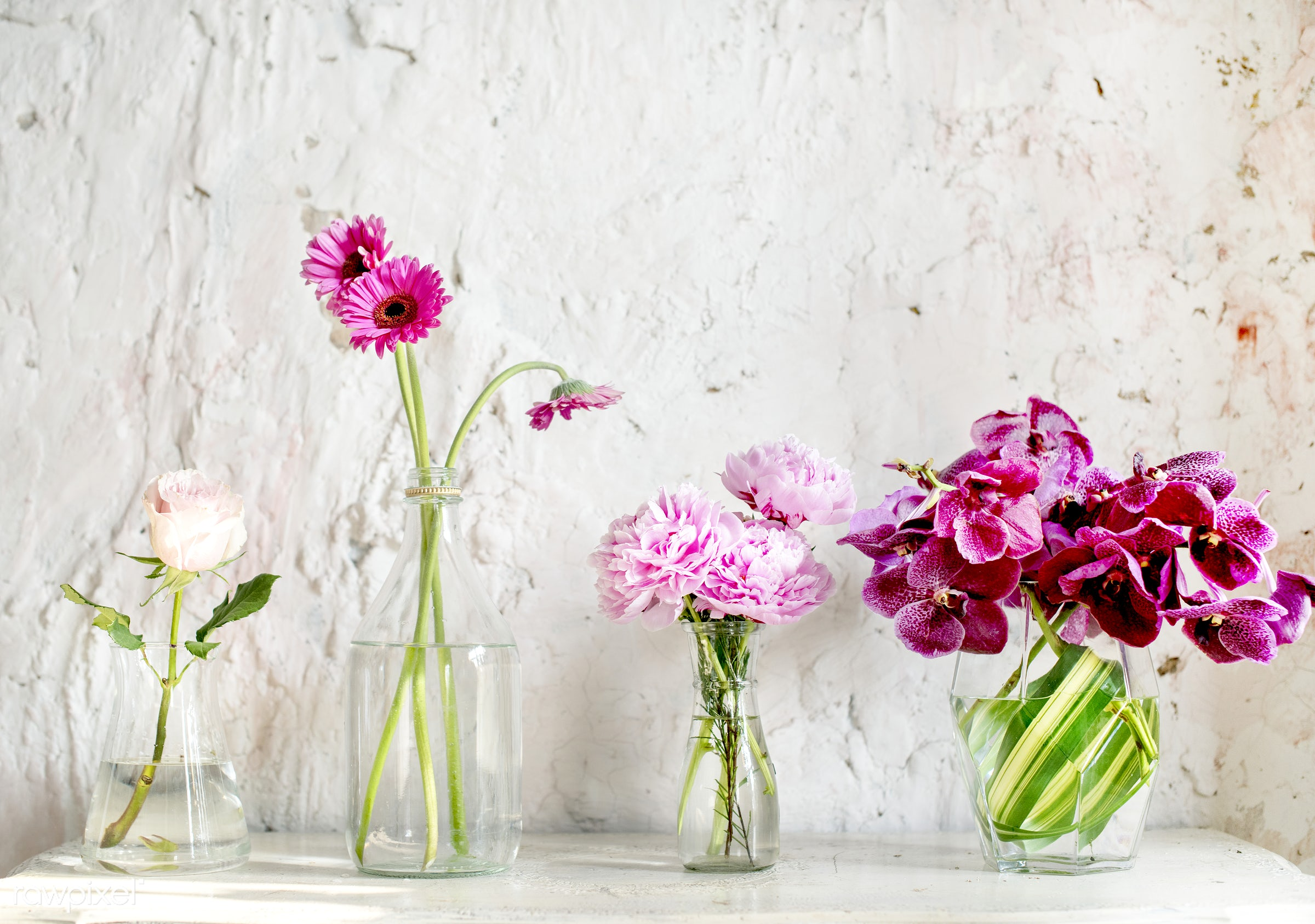 A row of vases with pink flowers - single, indoor, romance, spring, blossom, style, glass, flower, vase, vintage, blooming,...