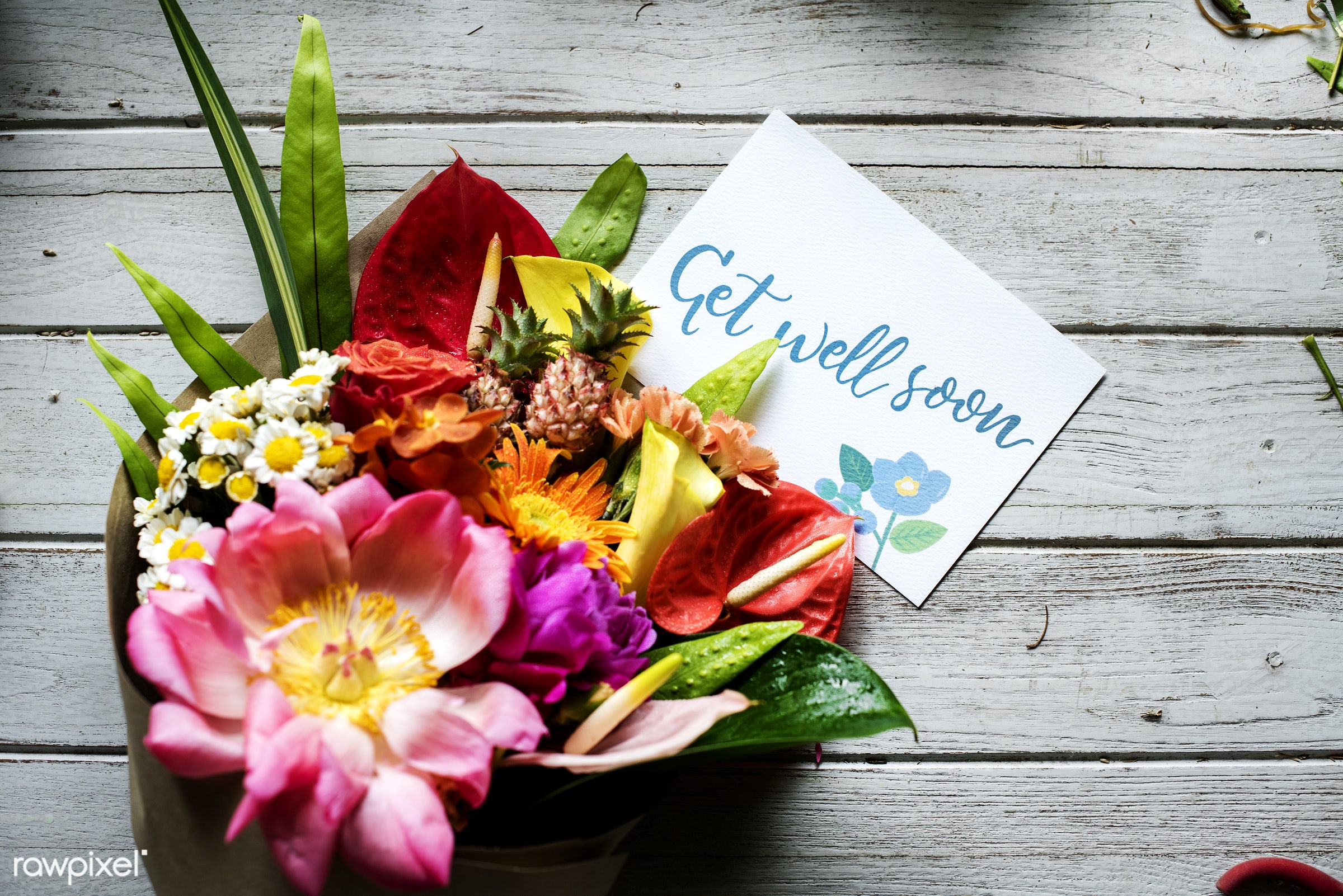 plant, bouquet, decoration, flora, refreshment, leisure, table, florist, wooden, recreational, fresh, card, get well soon,...