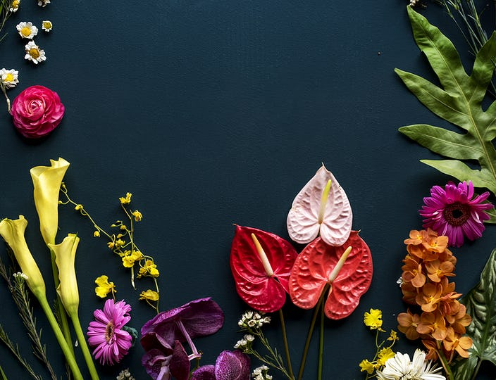 Colorful tropical flowers on black background