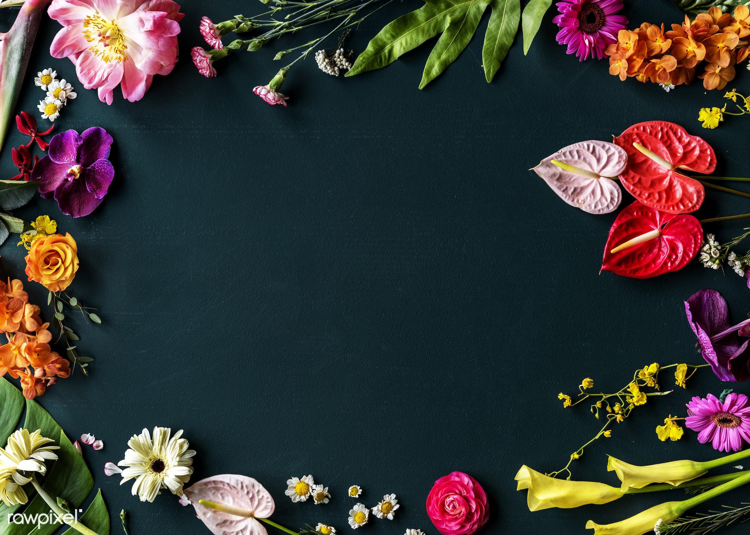Colorful flowers on black background - plant, bouquet, concept, decorative, botany, leaf, botanical, leaves, romance, spring...