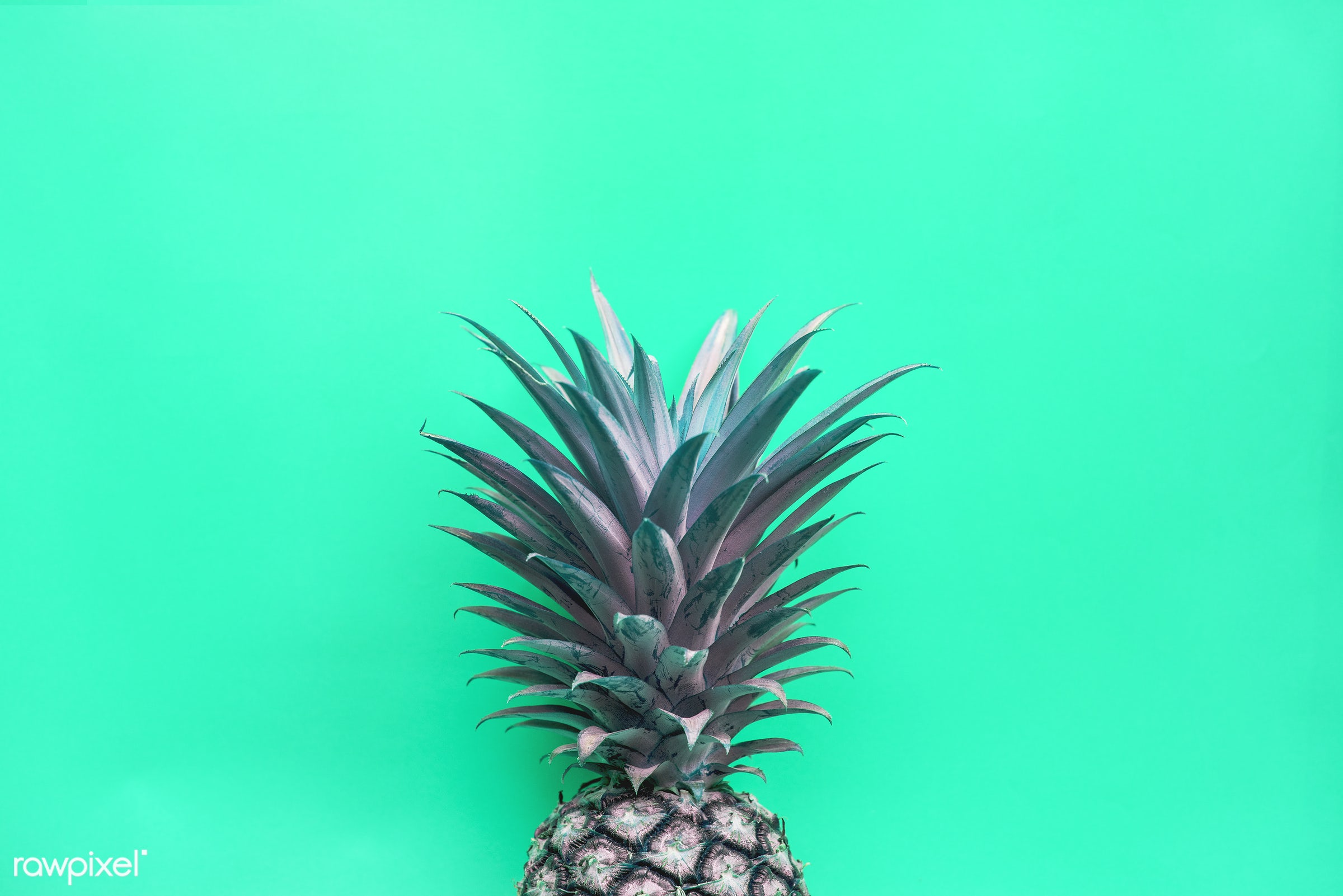 Pineapple with green background - juicy, tropical, hawaiian, vitamins, fresh, antioxidant, isolated, fruit, fruits,...