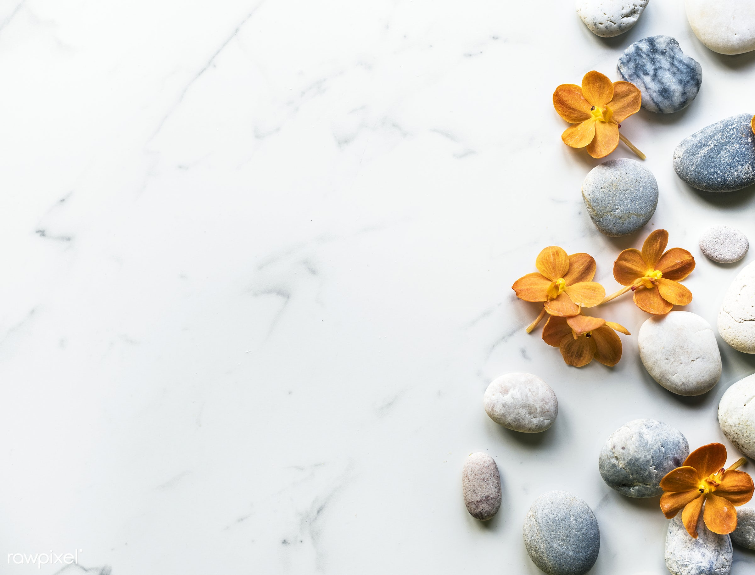 calm, concept, aroma, relax, treatment, stone, rock, beauty, blossom, balance, tranquil, nature, fresh, flower, spa,...