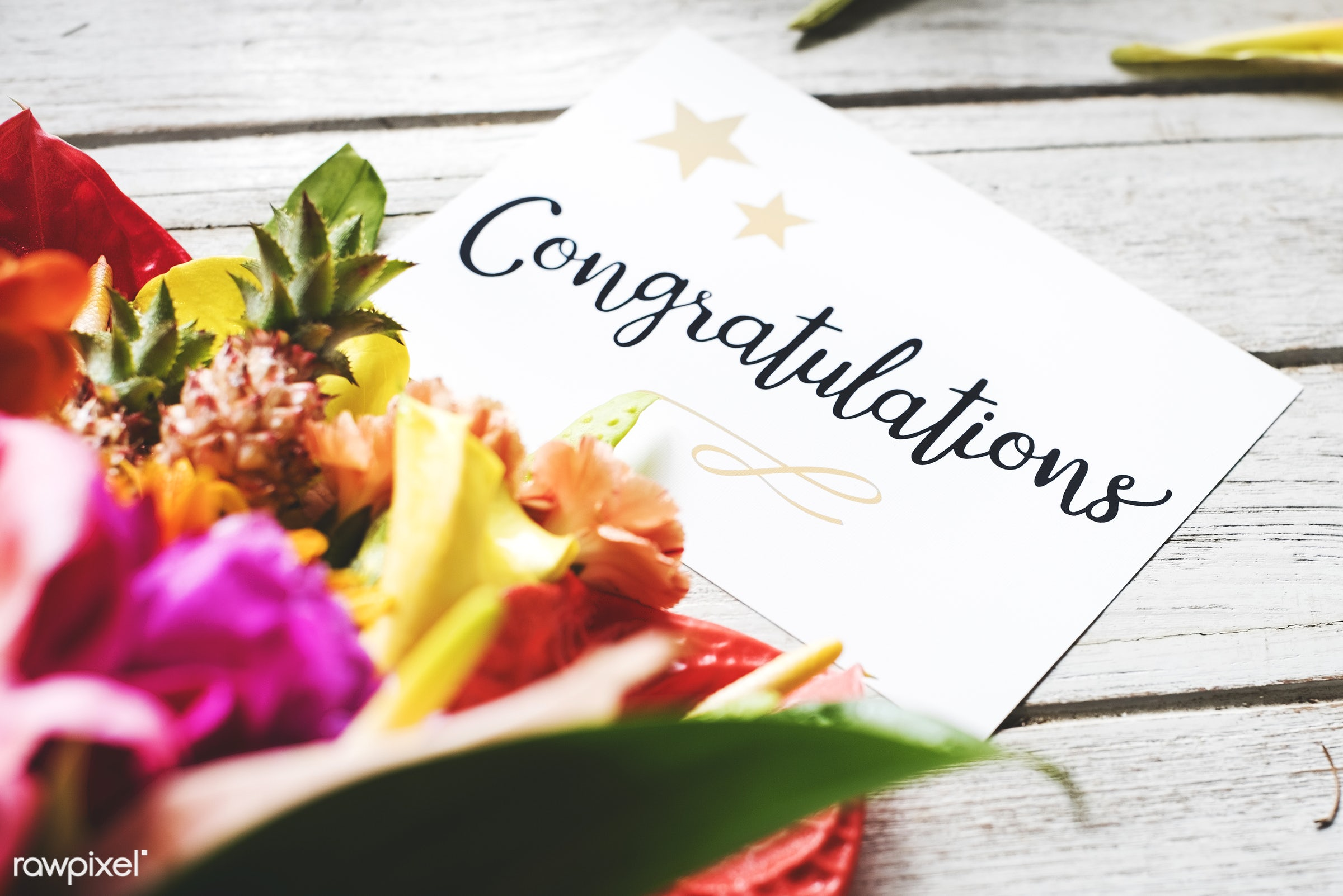 expression, bouquet, congratulations, leaves, congrats, card, cheerful, flower, victory, achievement, greeting, honor,...