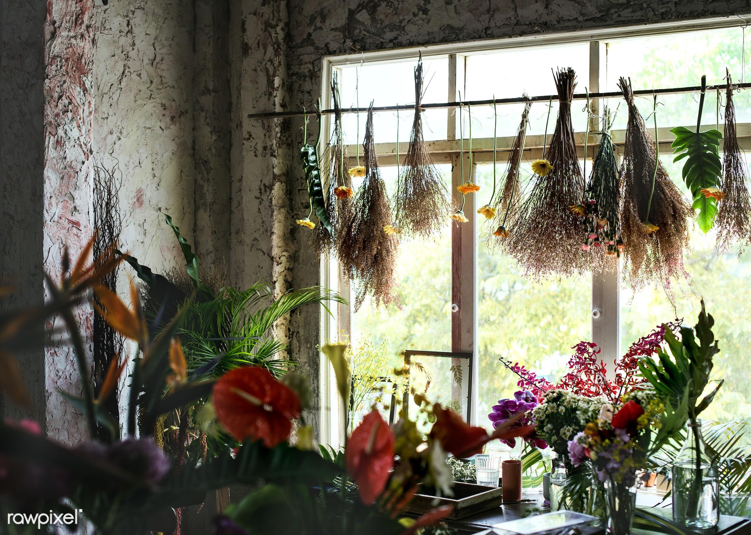 plant, shop, bouquet, concept, decorative, botany, leaf, botanical, romance, blossom, decor, fresh, foliage, bunch, flowers...