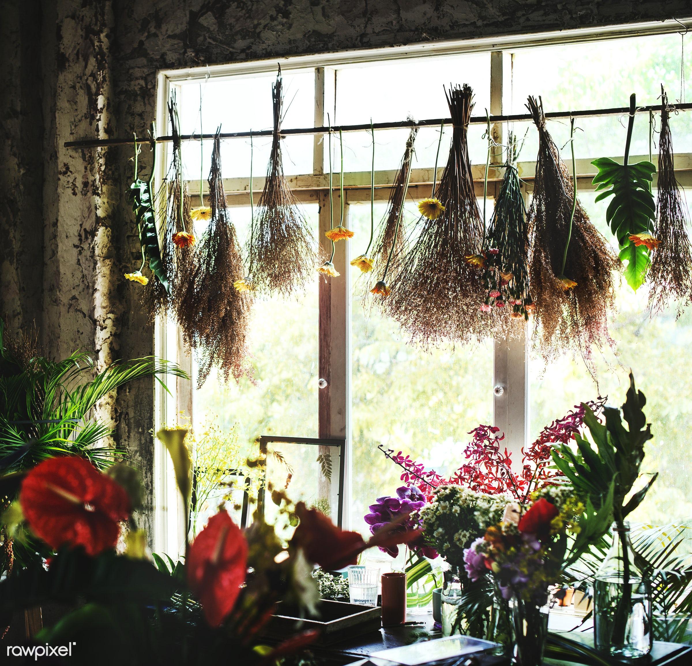 plant, bouquet, concept, decorative, botany, leaf, botanical, leaves, romance, spring, blossom, florists, nature, fresh,...