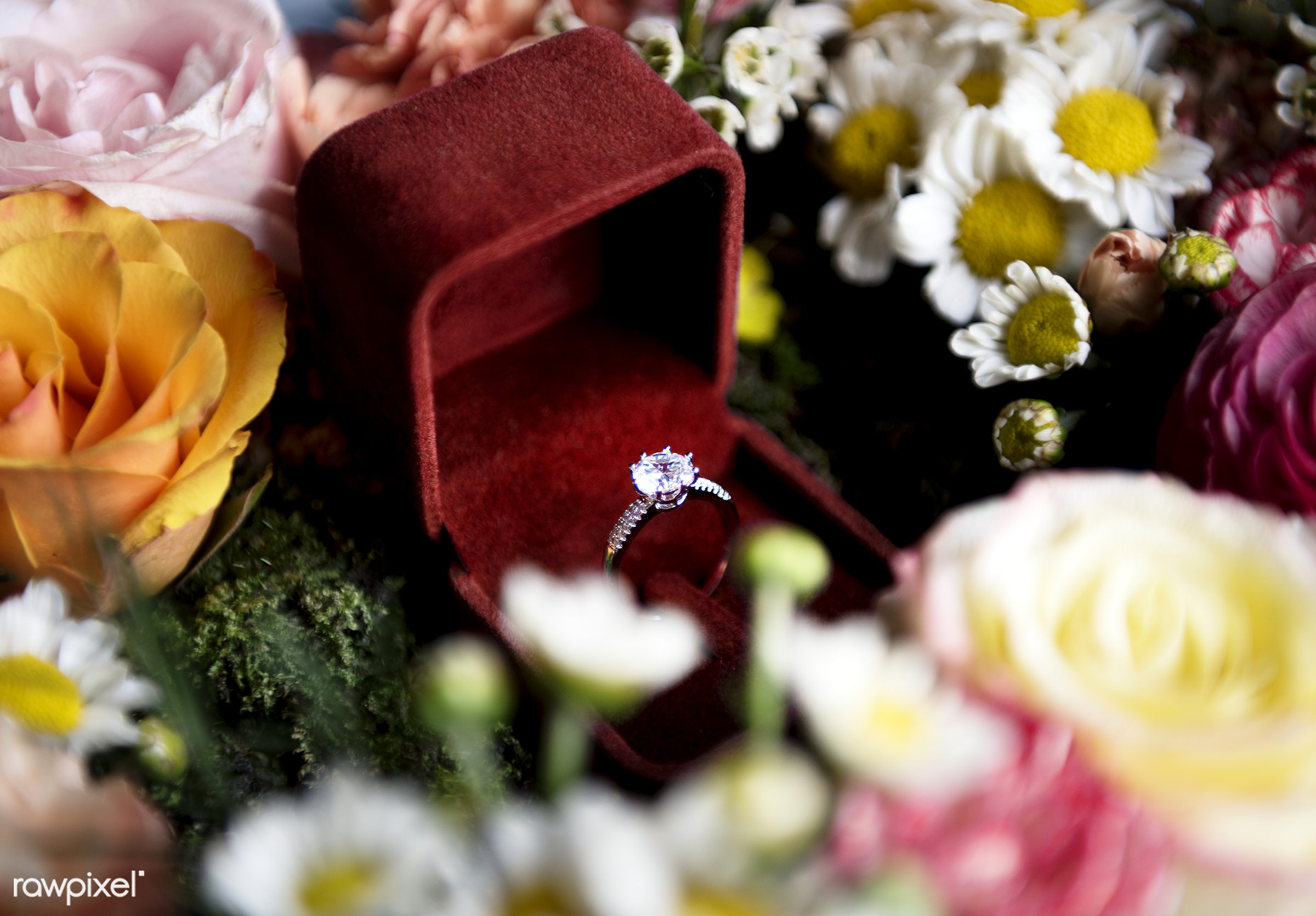 wedding, arrangement, ceremony, closeup, daisy, decoration, engagement, flowers, jewel, marriage, nobody, objects, prepare,...