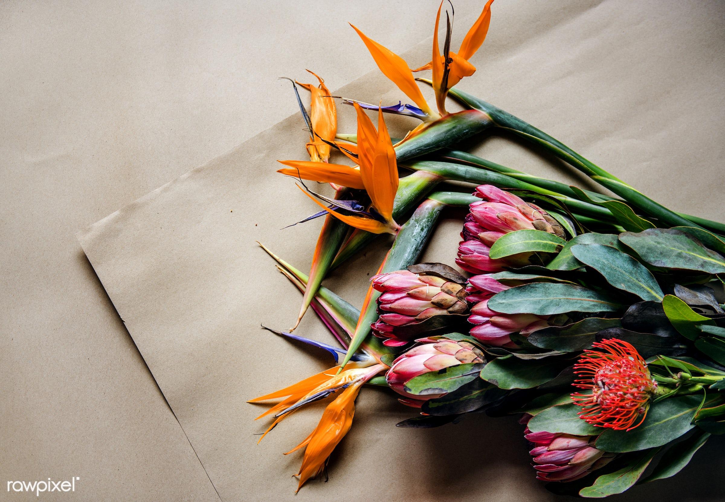 Different flowers for a bouquet - arrangement, birds of paradise, bloom, brown paper, closeup, craft paper, exotic, flora,...