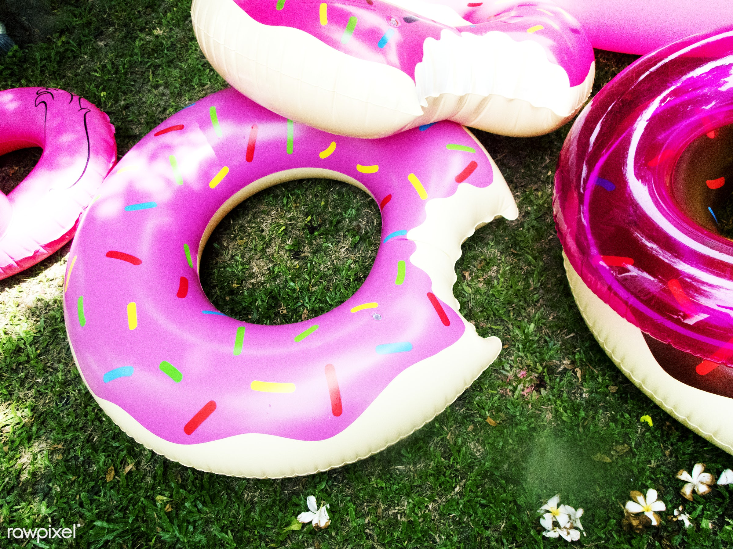 donut, inflatable, pool, backyard, closeup, grass, holiday, lawn, nobody, objects, outdoors, park, shape, summer, tubes,...