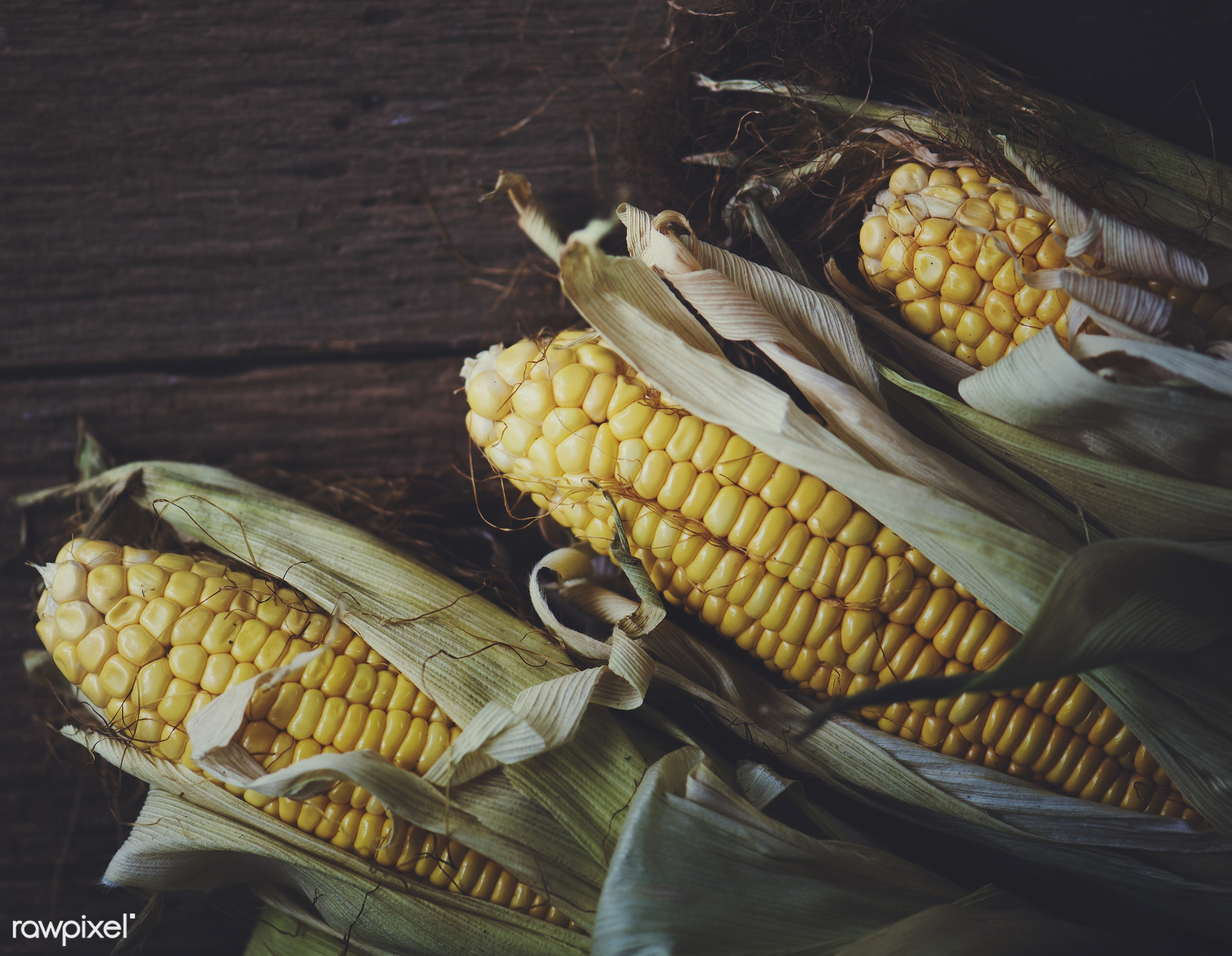 raw, maize, type, gastronomy, corn, kind, fresh, vegetarian, cooking, ingredient, gourmet, nourishment, vegetables, culinary...