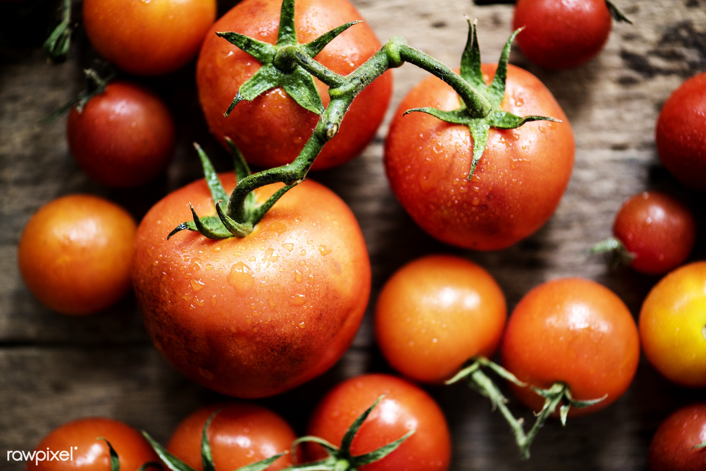 raw, nobody, farm, real, nature, fresh, products, closeup, agriculture, tomatoes, organic, food, healthy, harvest, vegetable...