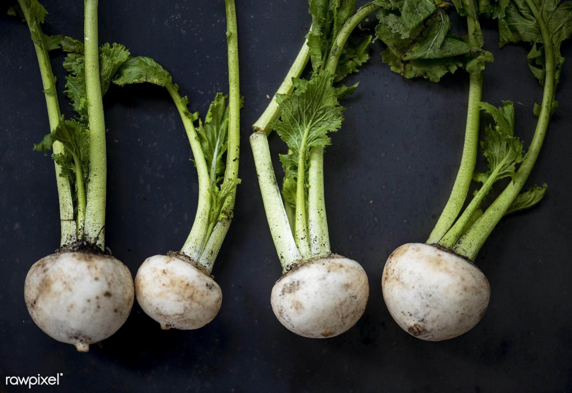 raw, turnips, type, gastronomy, kind, fresh, vegetarian, cooking, ingredient, gourmet, nourishment, vegetables, culinary,...