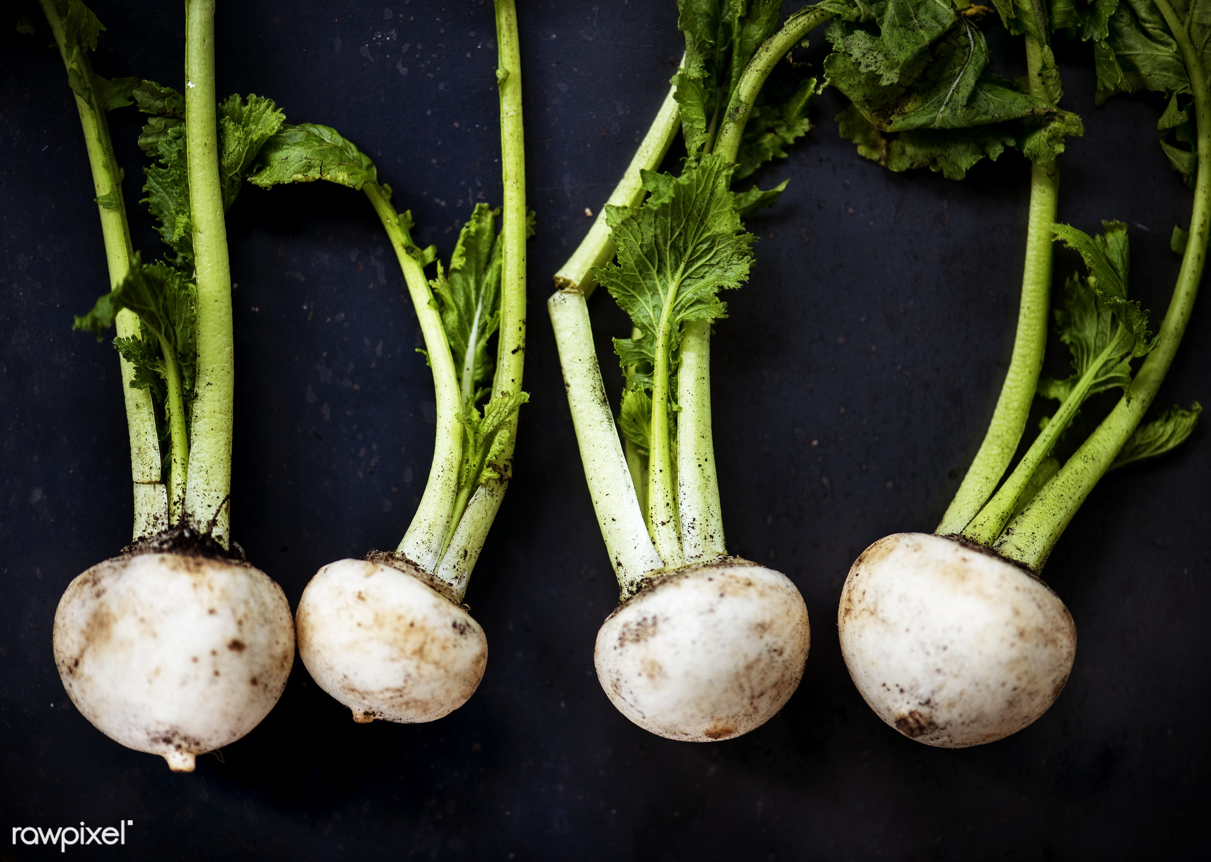 raw, nobody, farm, black background, ingredients, nature, fresh, turnip, products, closeup, white, agriculture, organic,...