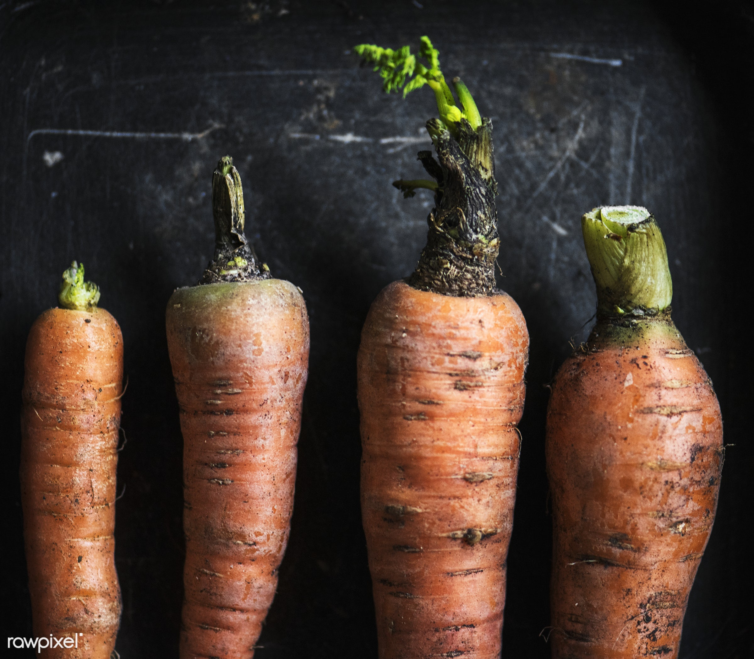 Carrotts - raw, nobody, set, black background, farm, ingredients, nature, fresh, aerial view, dirt, products, closeup,...