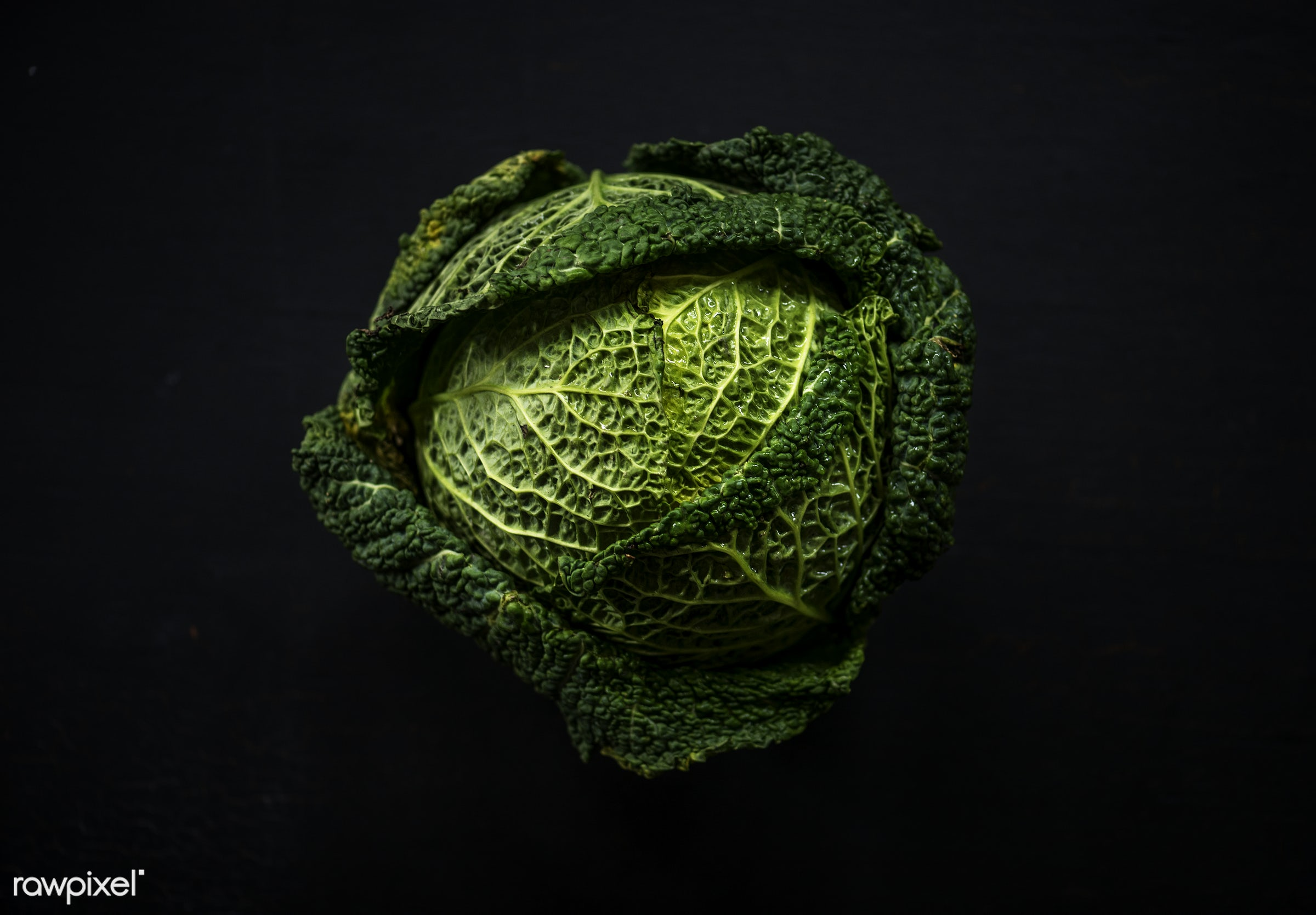 Cabbage - raw, plant, nobody, leaf, black background, farm, ingredients, nature, fresh, aerial view, products, closeup,...