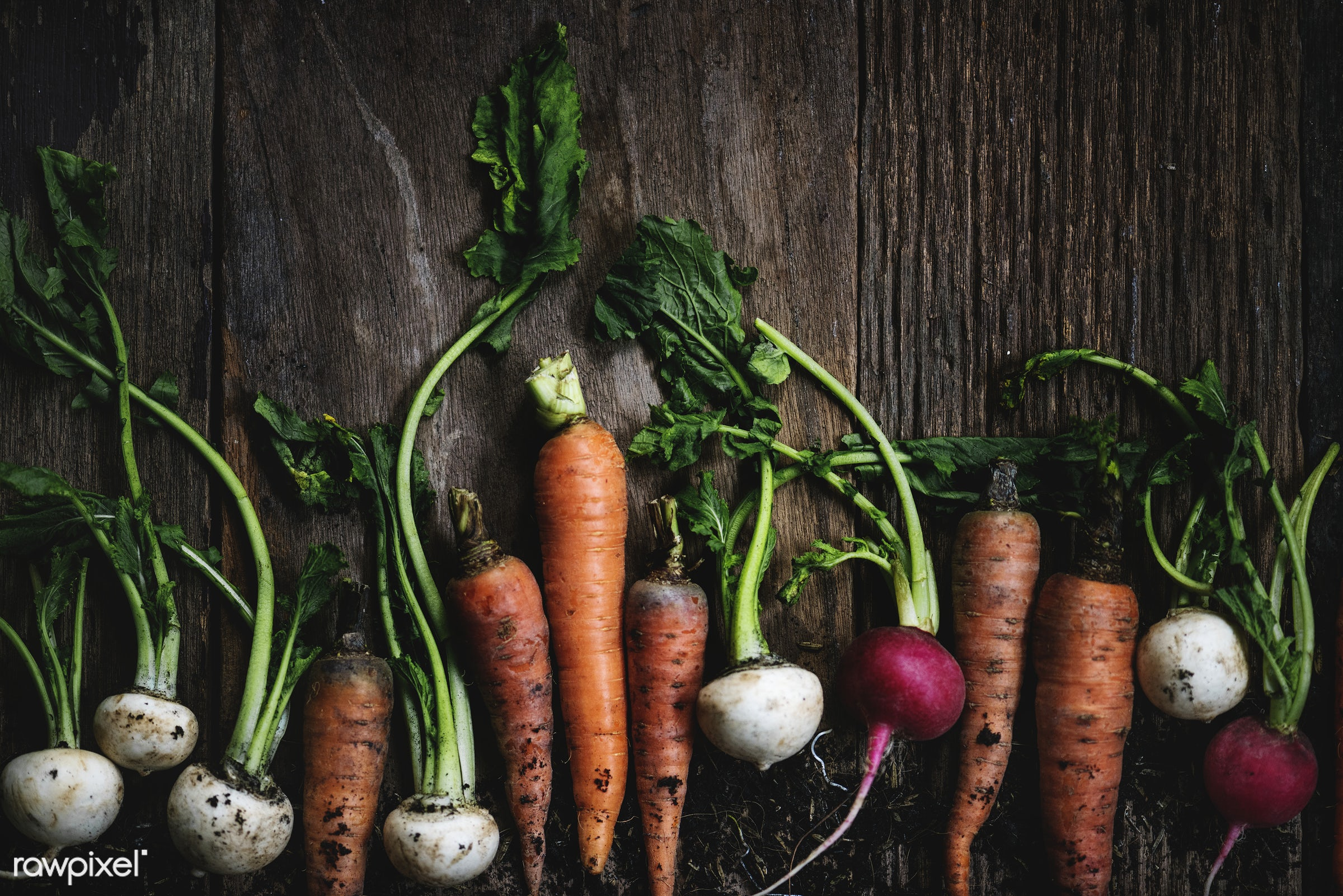 Root vegetables - raw, nobody, set, farm, ingredients, nature, fresh, wooden background, various, pile, aerial view, dirt,...