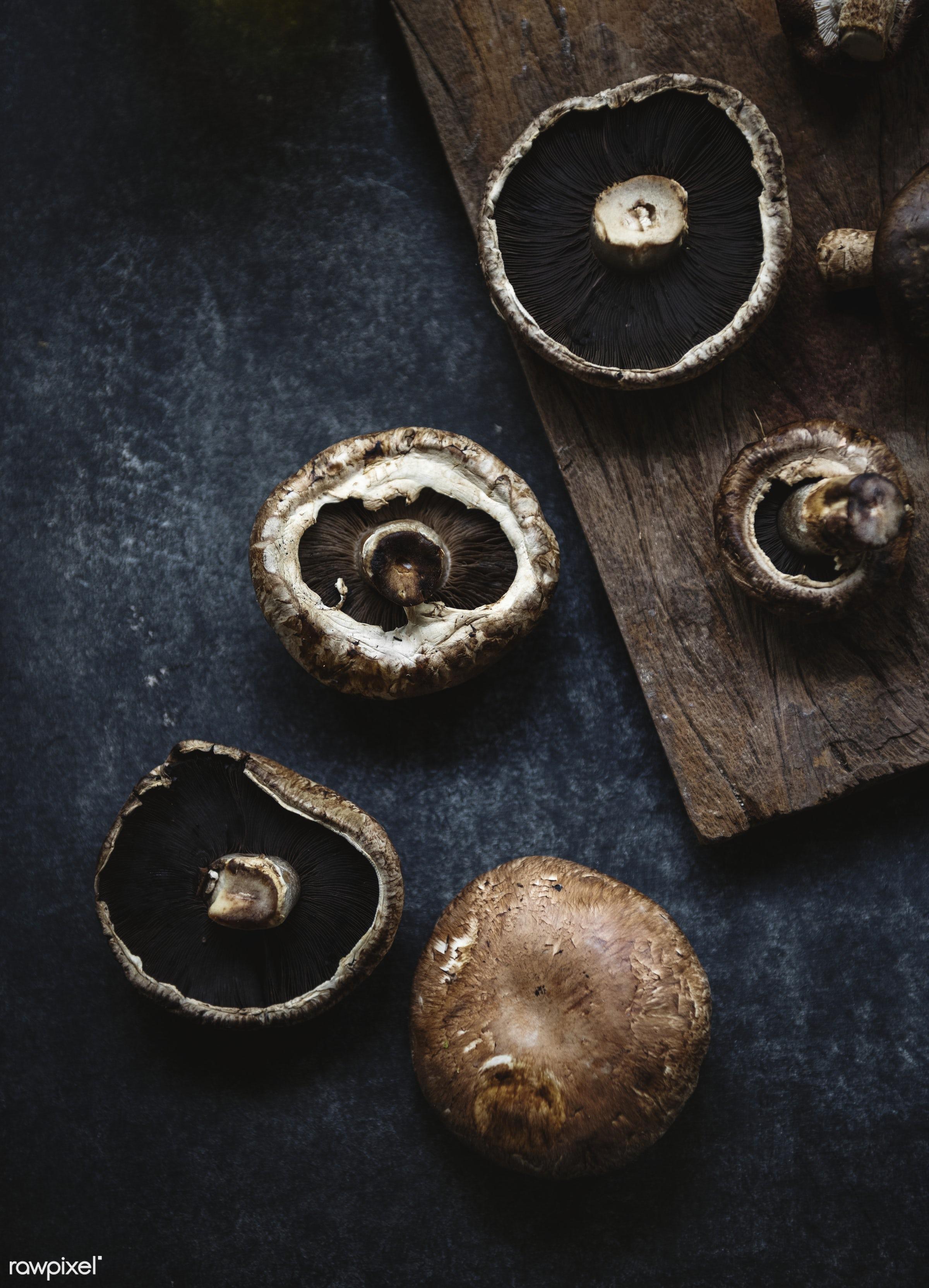 Portobello mushroom - mushroom, plant, raw, nobody, farm, ingredients, real, nature, fresh, products, closeup, agriculture,...