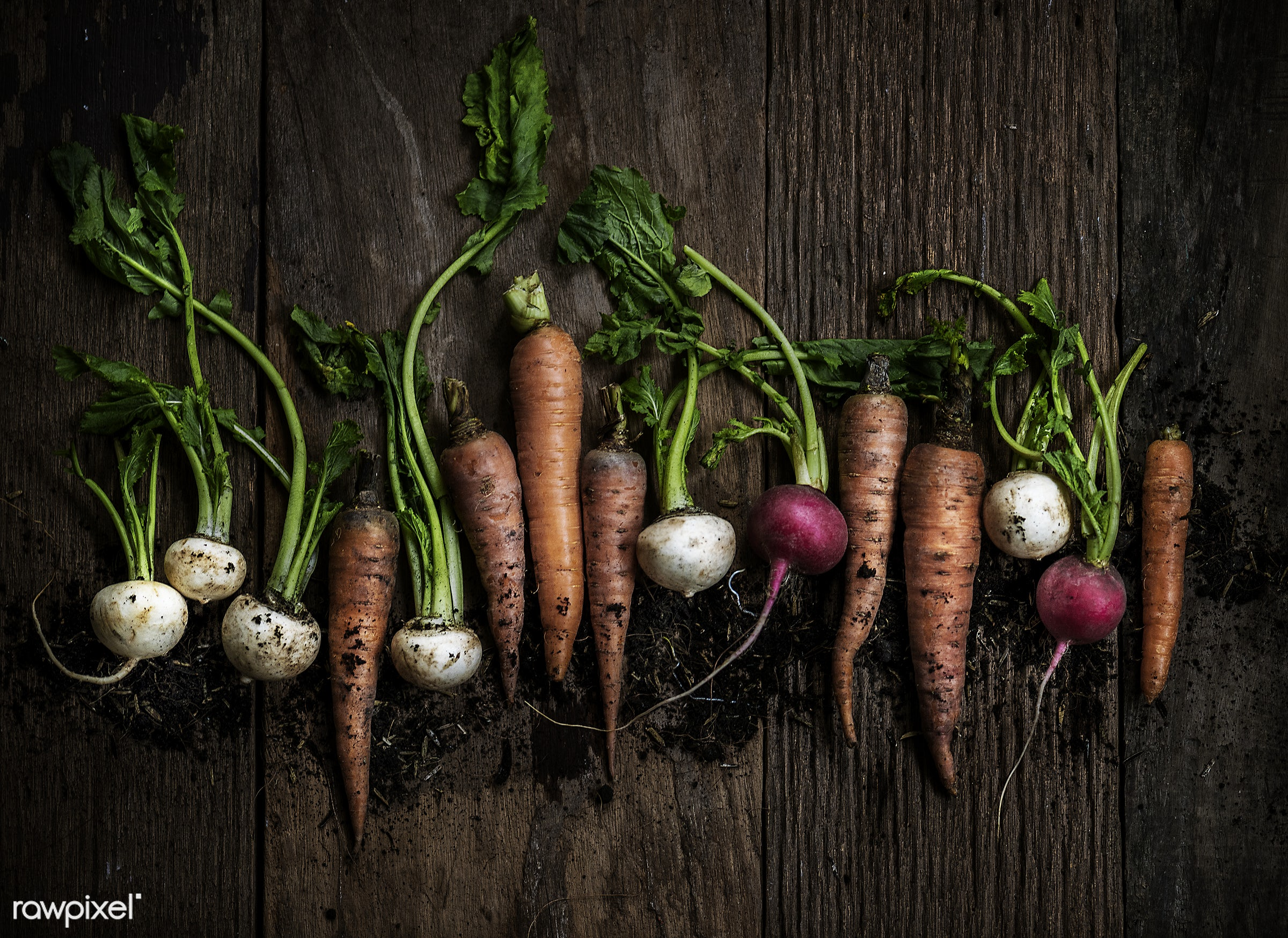 raw, nobody, set, farm, ingredients, nature, fresh, wooden background, various, pile, aerial view, dirt, products, closeup,...