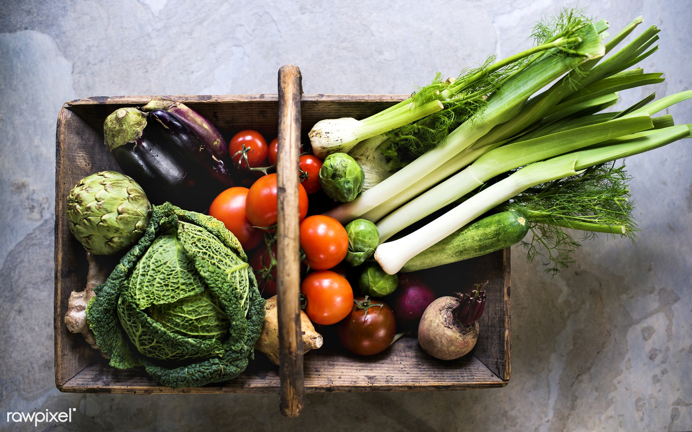 Various types of fresh vegetables - raw, nobody, fennel, eggplant, ingredients, farm, cucumber, nature, fresh, various,...