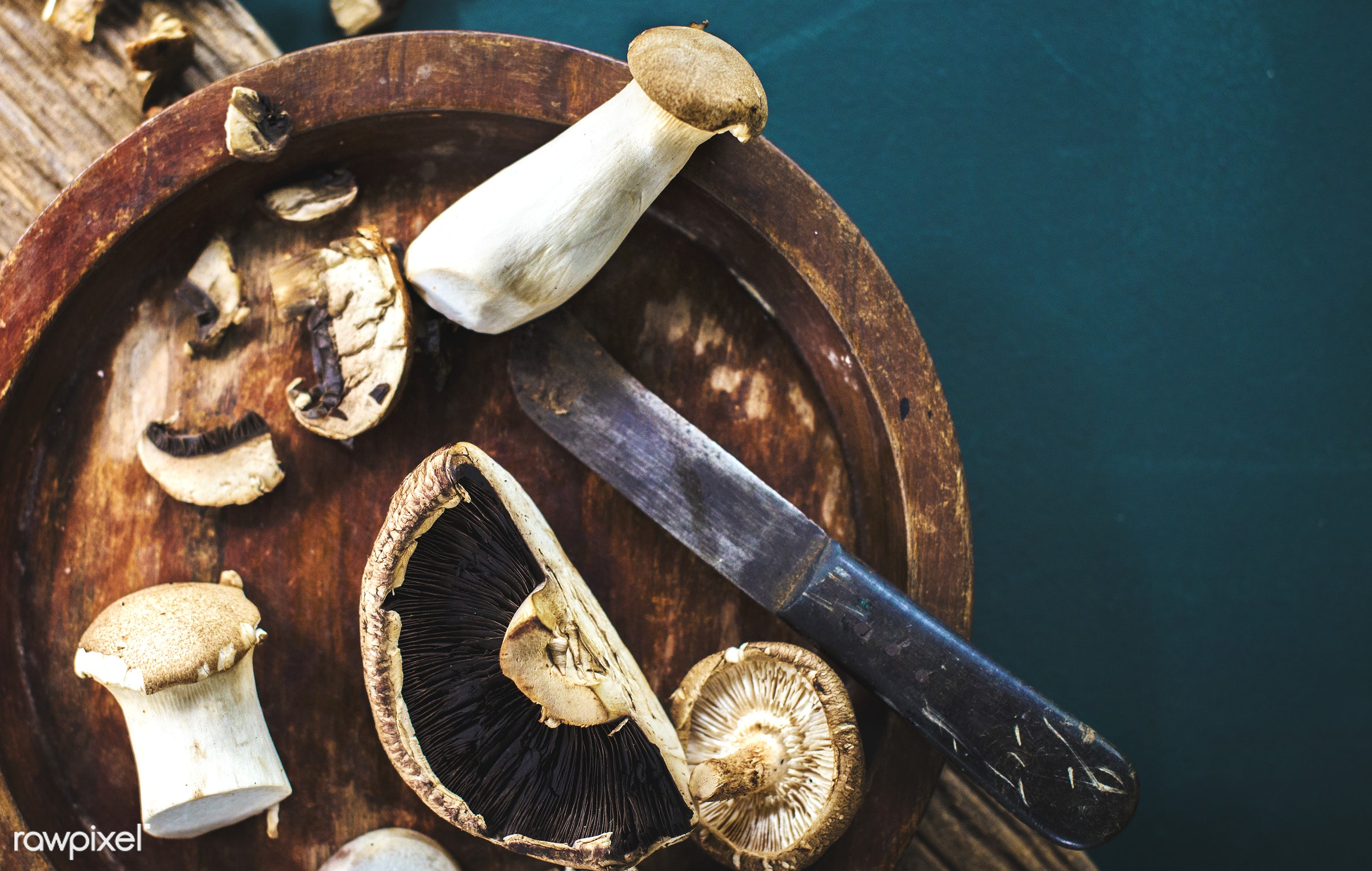 mushroom, plant, raw, nobody, ingredients, farm, real, nature, fresh, products, closeup, knife, eryngii, agriculture,...