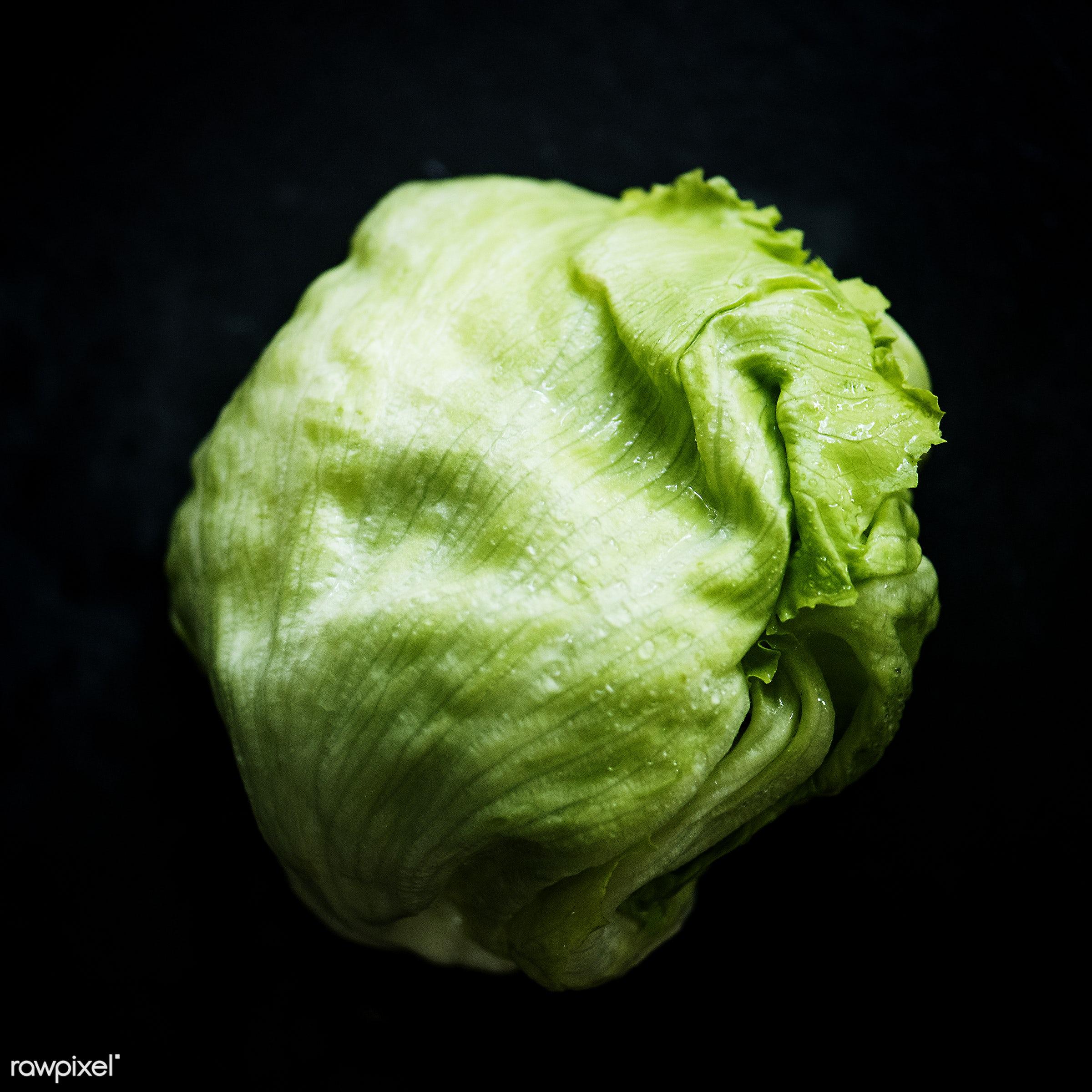 Fresh iceberg lettuce - raw, organic, nature, cabbage, fresh, background, healthy, harvest, vegetable, closeup, iceberg