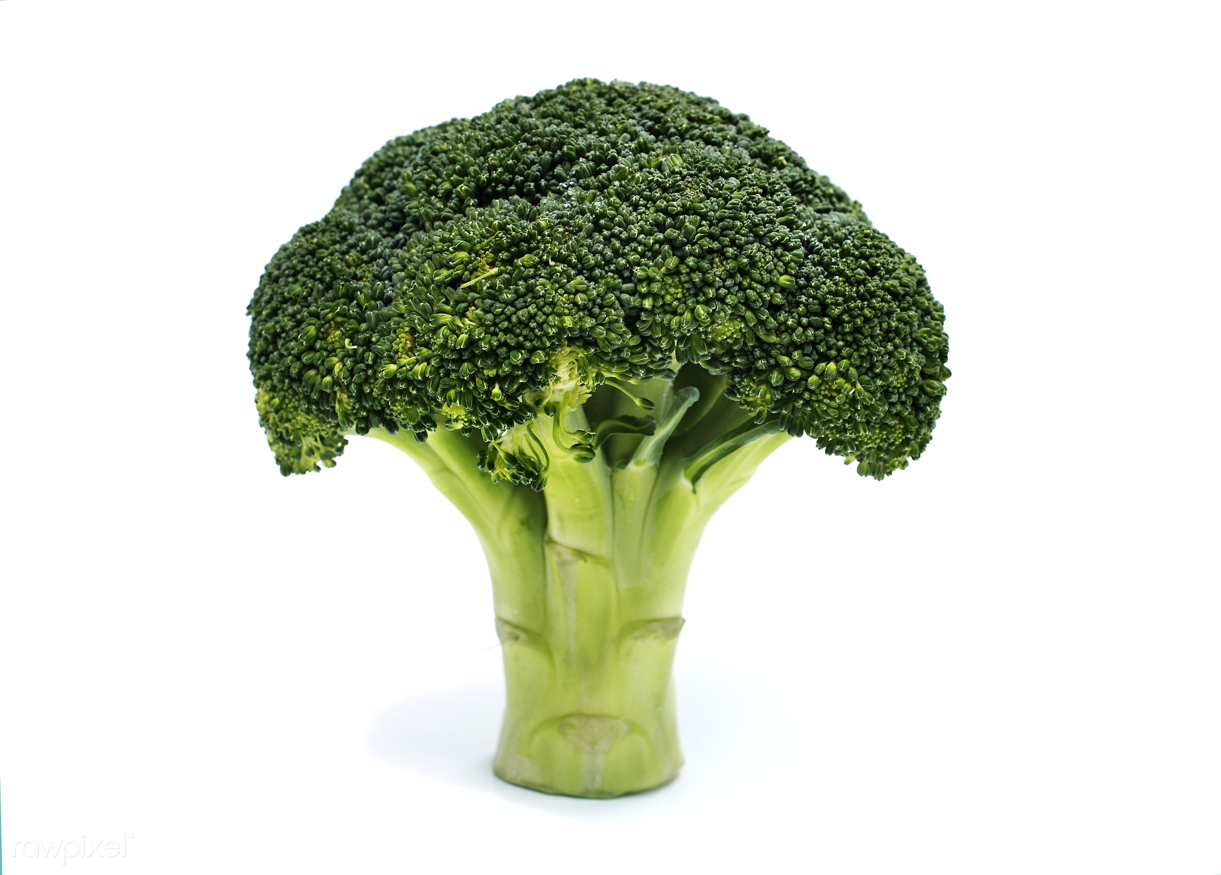 Fresh broccoli vegetable - superfood, isolated, isolated on white, green, white background, real, organic, nature, fresh,...