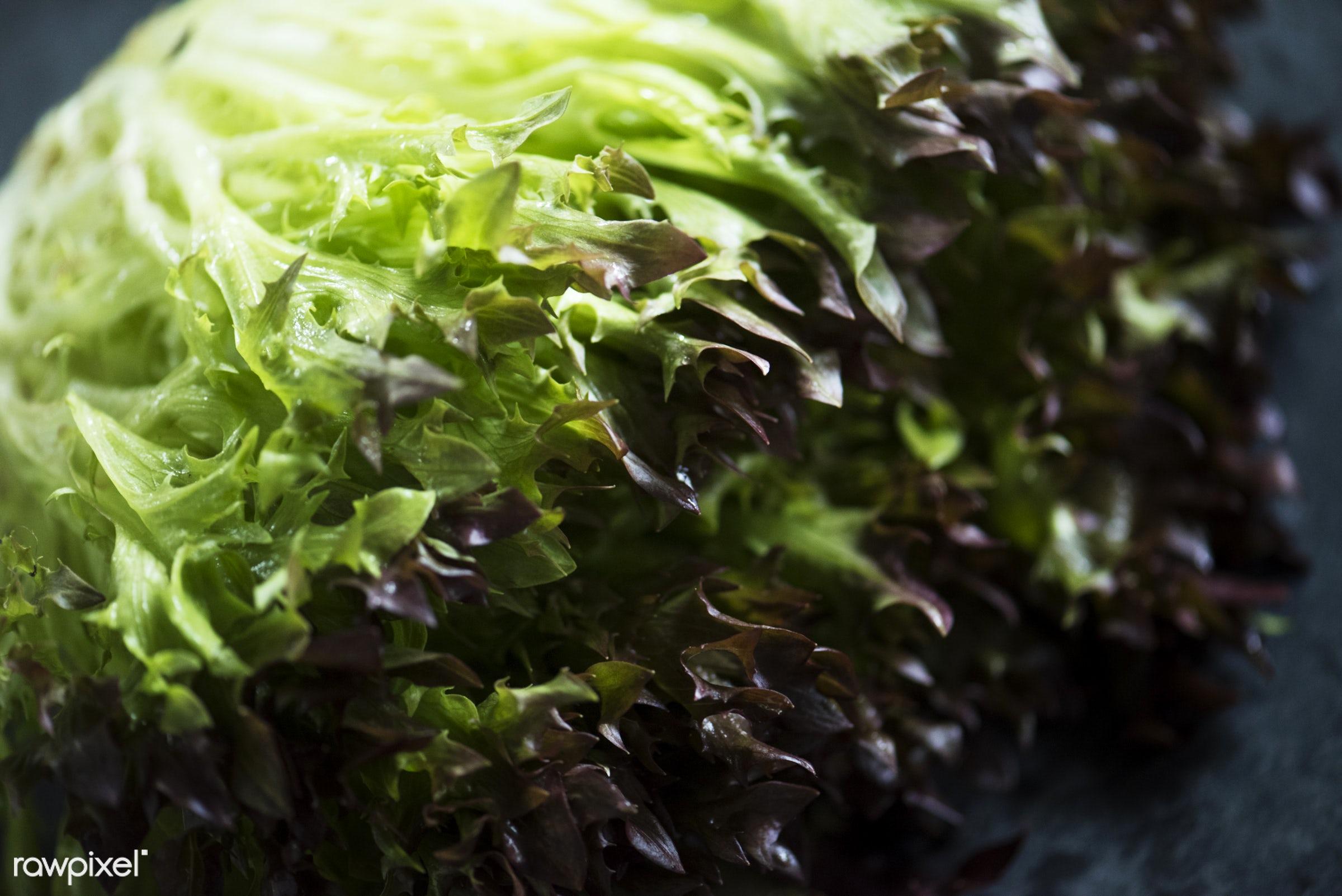 raw, green, culinary, veggies, fiber, edible, organic, nutrition, fresh, food, healthy, ingredient, vegetable, natural