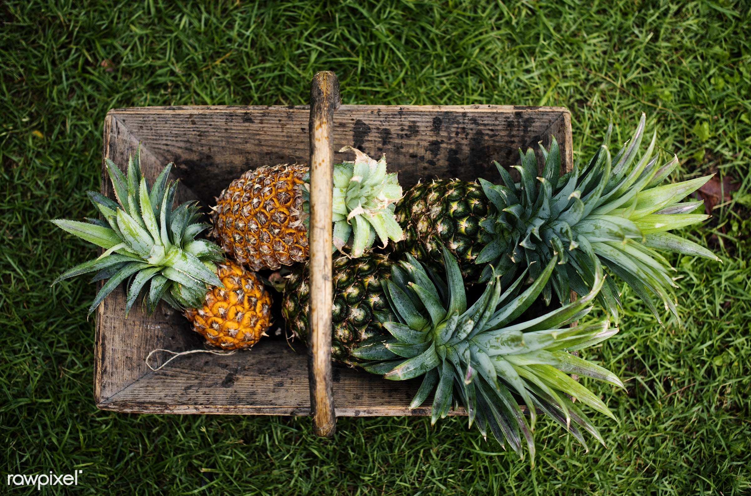 superfood, nobody, grass, green, tropical, aerial, pineapples, nutrients, real, organic, nature, fresh, vegetable, wooden...