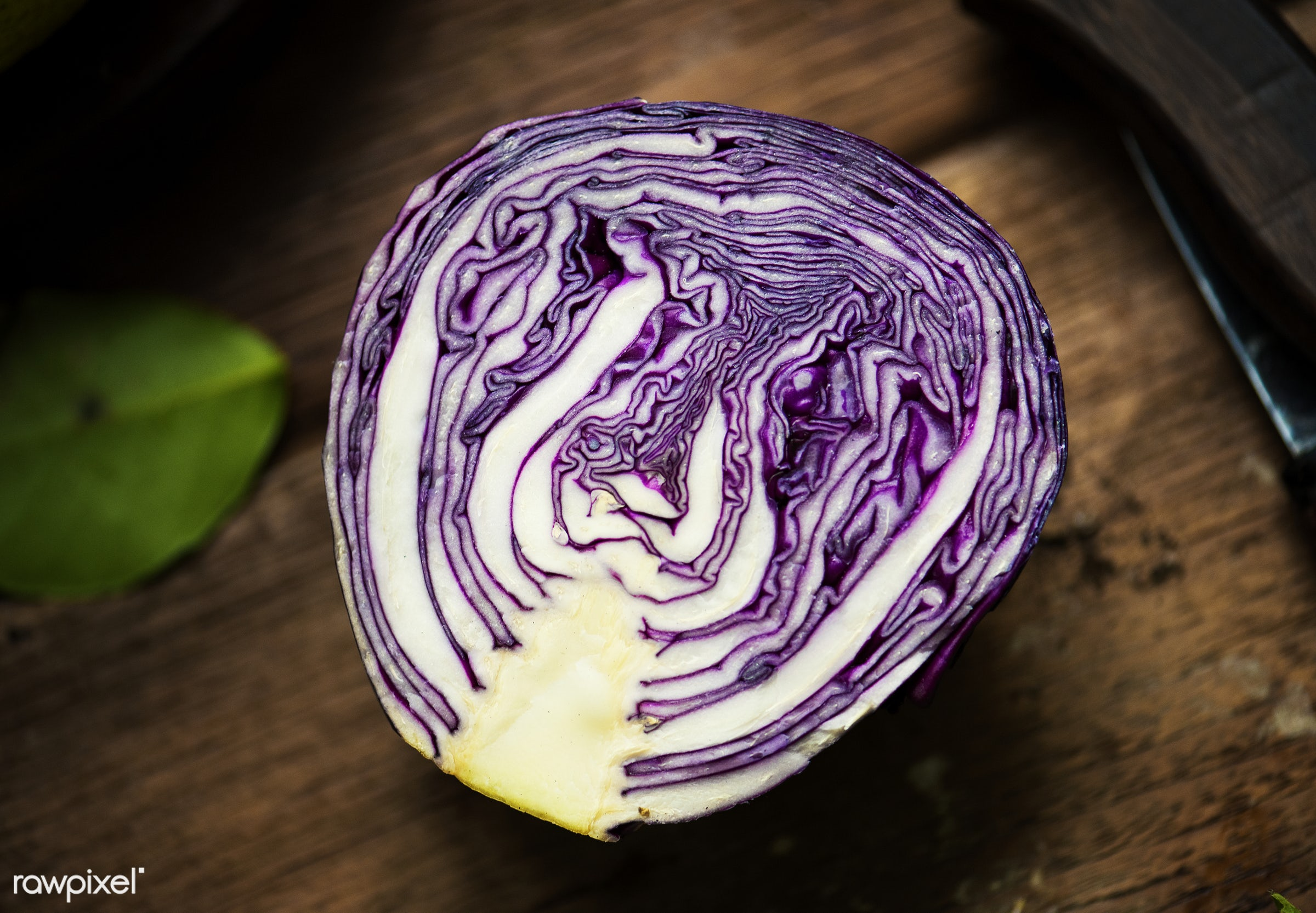 Closeup of fresh cut organic red cabbage - raw, nobody, purple, half, leaves, real, organic, red, nature, cabbage, fresh,...