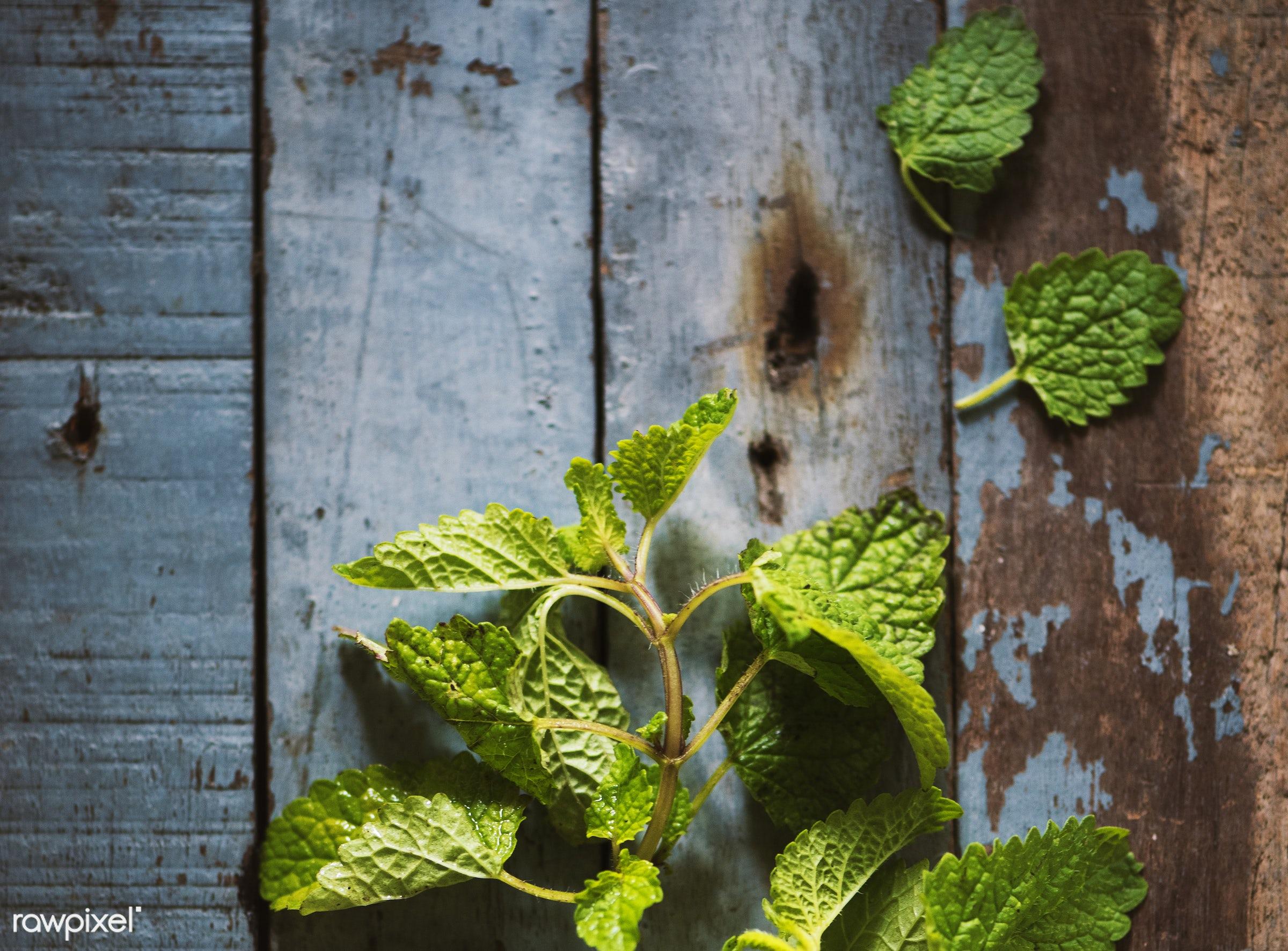 raw, herbs, fiber, fresh, ingredient, green, mint, culinary, veggies, edible, nutrition, organic, wooden, food, healthy,...