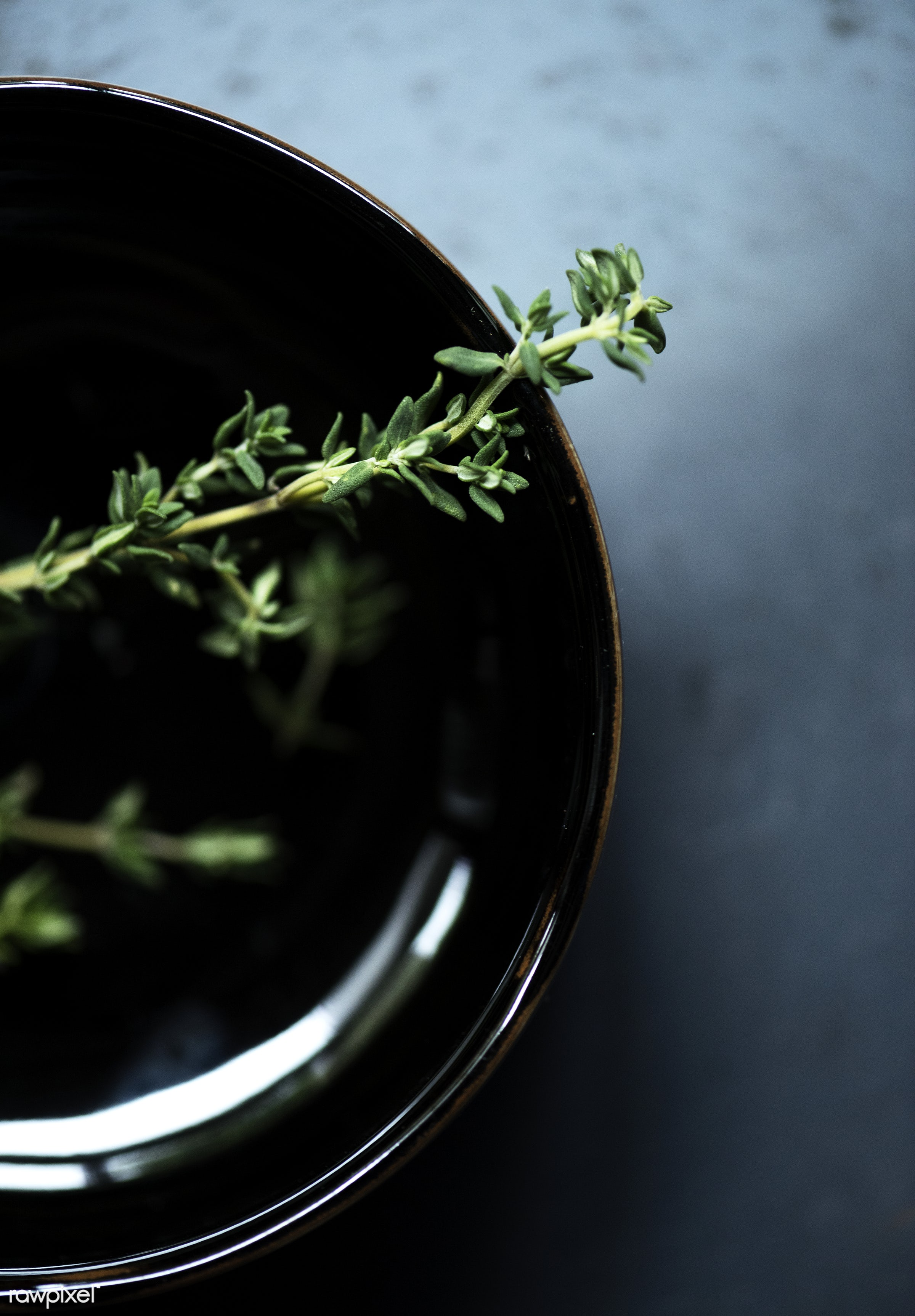 Fresh thymes herb - plant, raw, nobody, thymes, leaves, spices, real, organic, seasoning, nature, herb, fresh, food,...