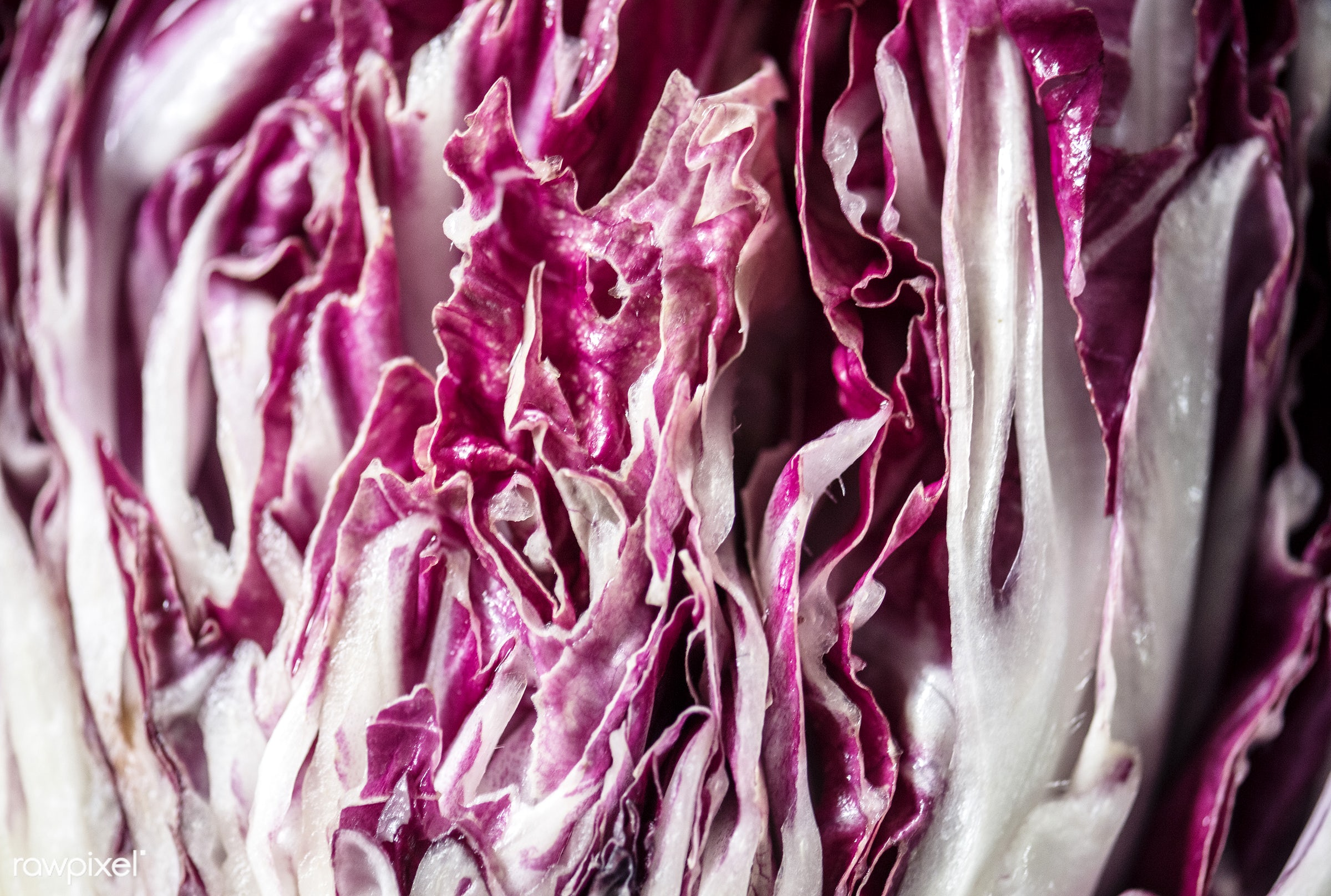 raw, culinary, veggies, fiber, edible, organic, nutrition, cabbage, fresh, food, healthy, ingredient, vegetable, natural