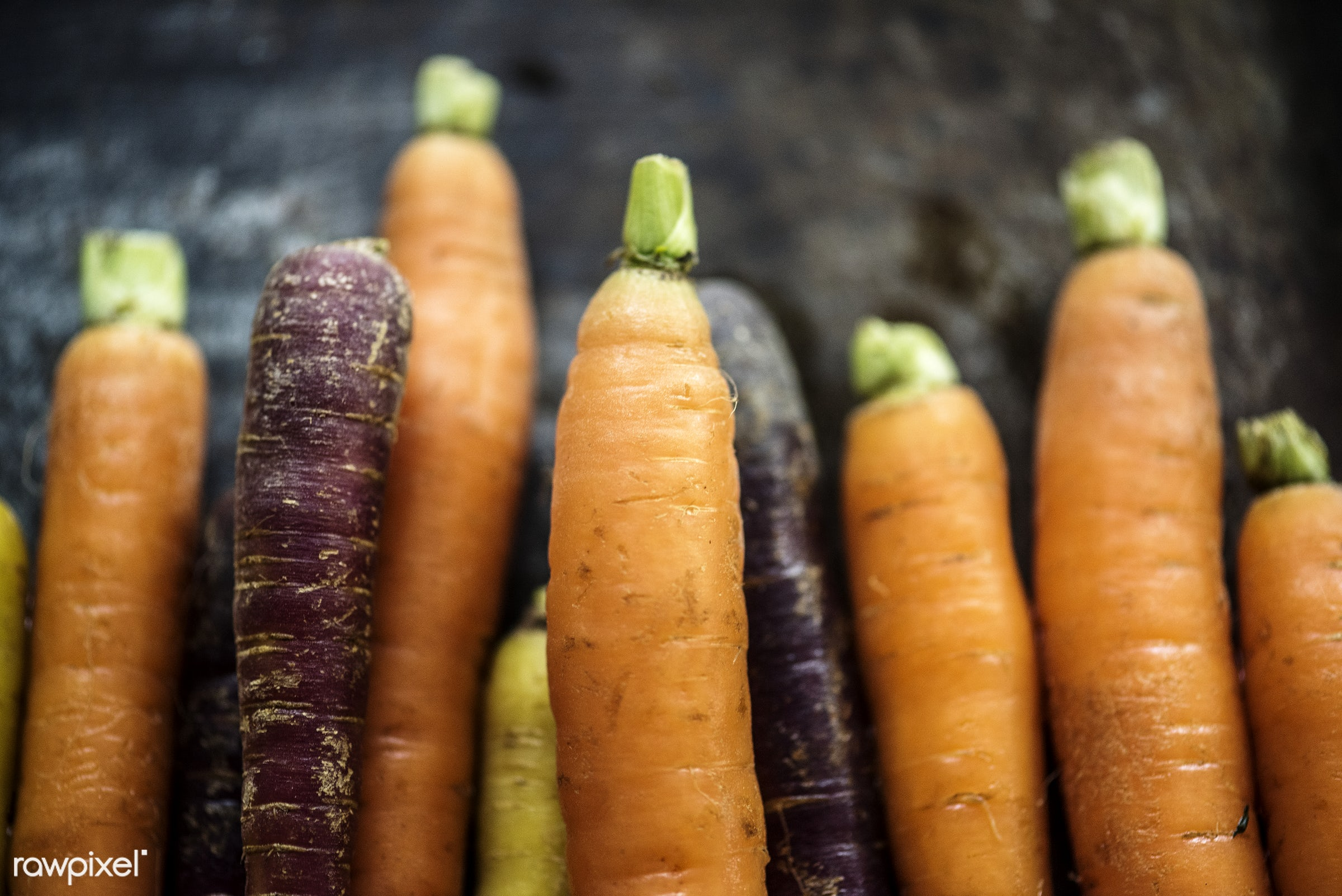 Fresh organic carrots - nutrients, real, organic, fresh, mixed, carrots, various, bunch, types, vegetable, closeup