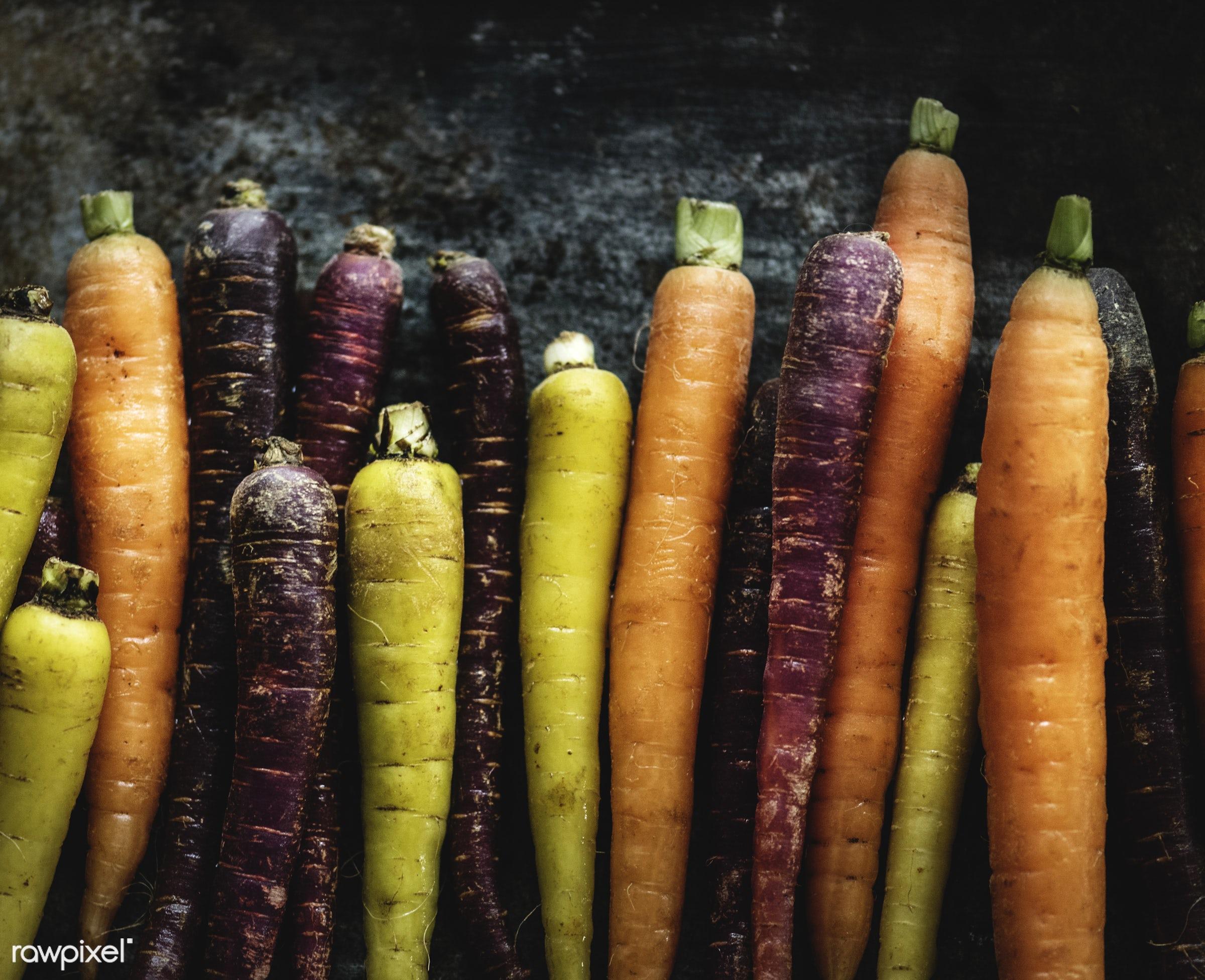 raw, carrot, root, fiber, fresh, ingredient, culinary, veggies, edible, nutrition, organic, food, healthy, vegetable, natural