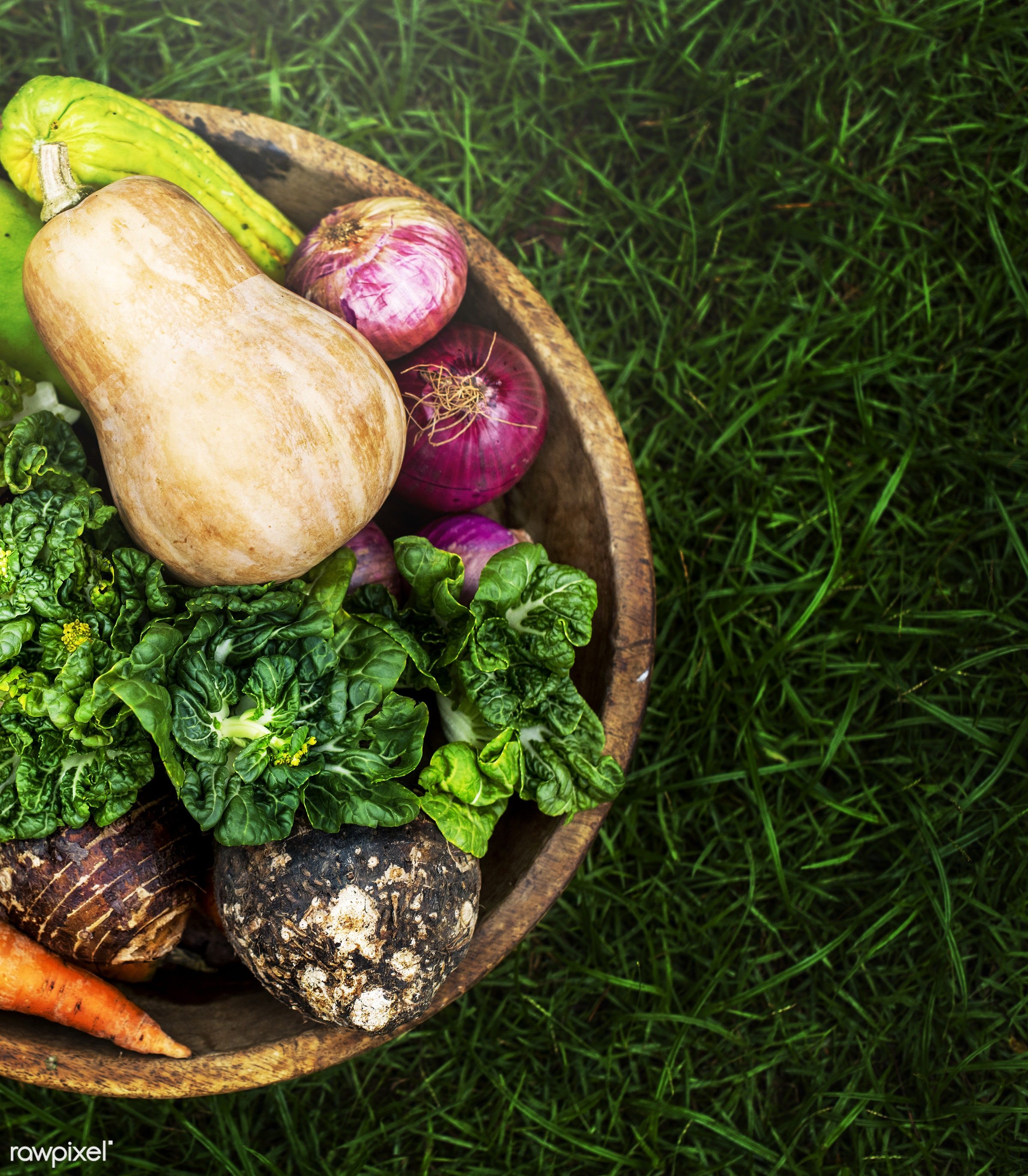 raw, different, root, bucket, fiber, kind, fresh, ingredient, culinary, veggies, variety, edible, nutrition, organic,...