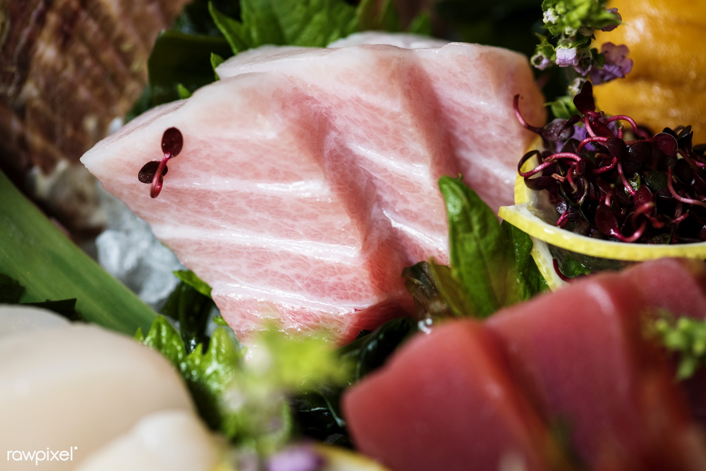 japanese, sashimi, asian, closeup, cuisine, delicious, eating, fish, food, fresh, gourmet, healthy, japanese food, meal,...