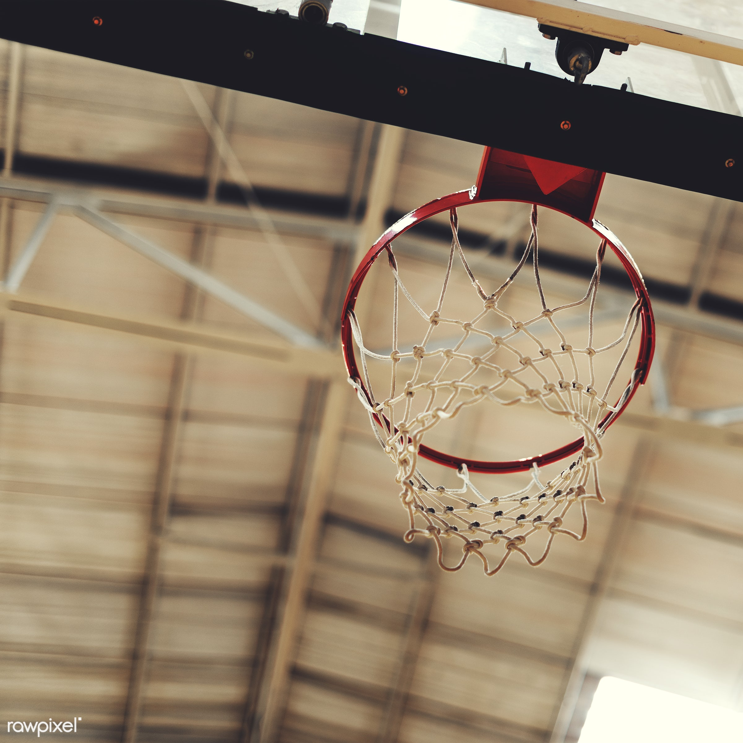Young basketball player shoot - closeup, basketball, court, exercise, game, gym, gymnasium, hoop, loop, nobody, object,...