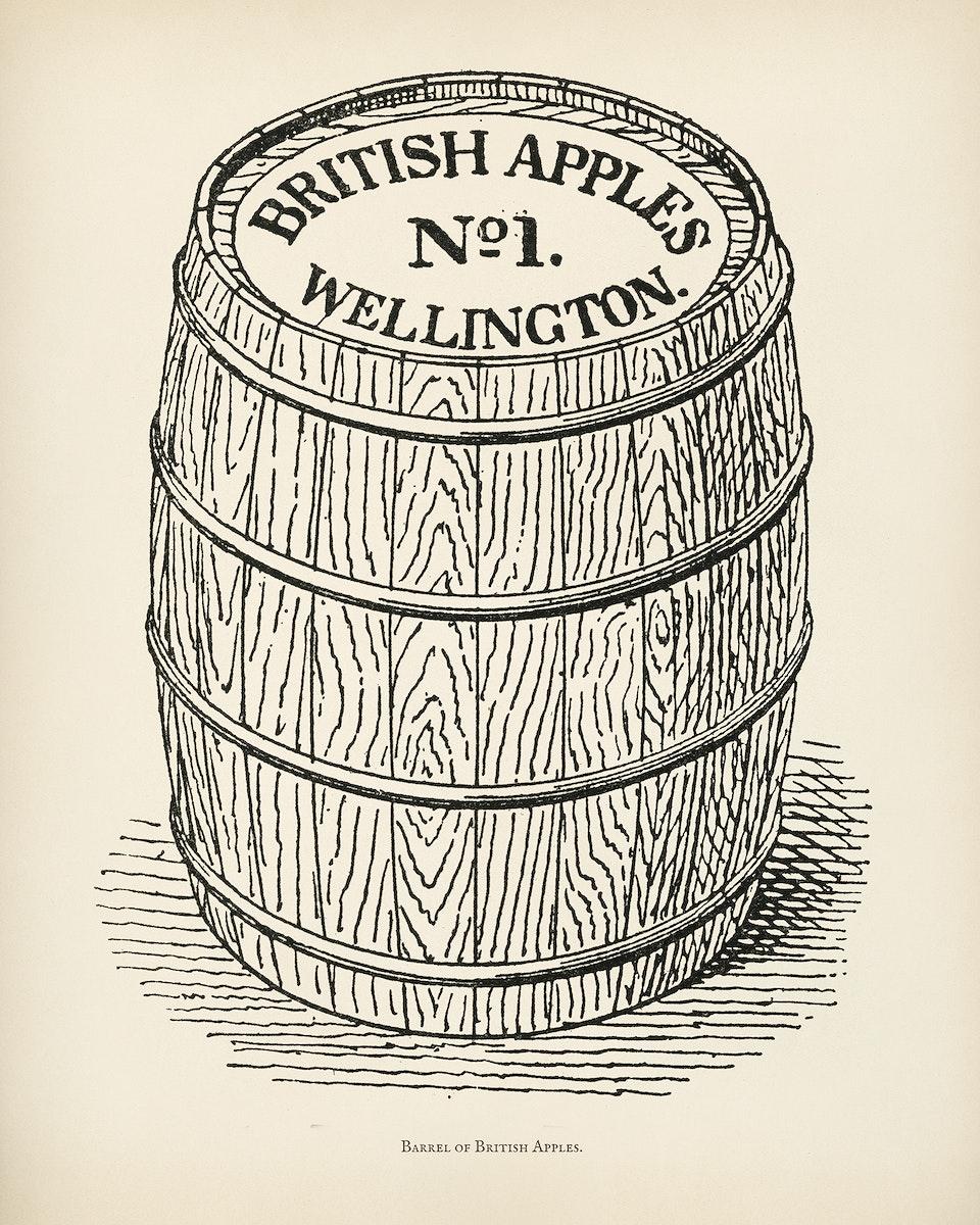 The fruit grower's guide : Vintage illustration of british apples, wellington barrel
