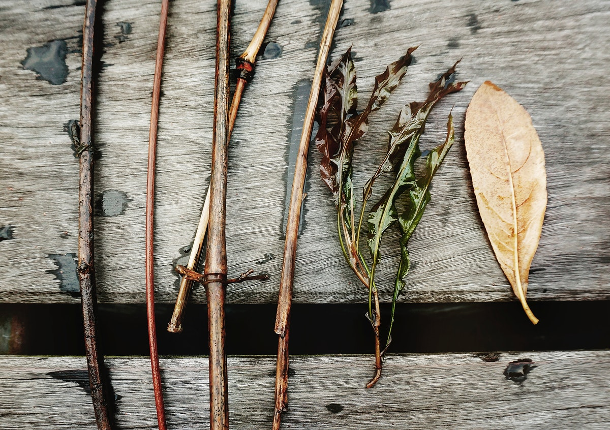 Closeup aerial view of plant branches on wooden table