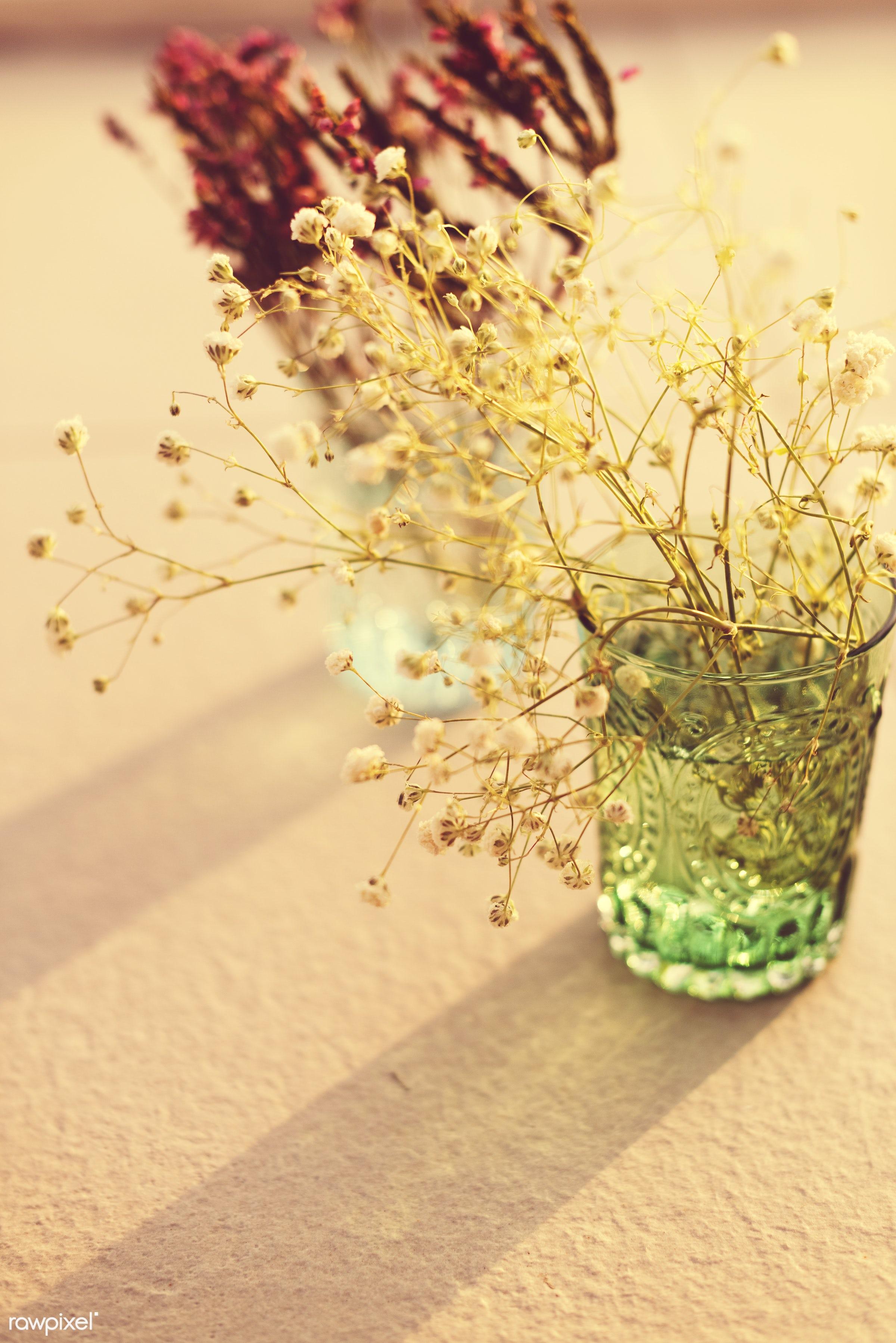 Flowers in glass vases - aroma, background, beautiful, celebration, environment, environmental, flower, fresh, garden,...
