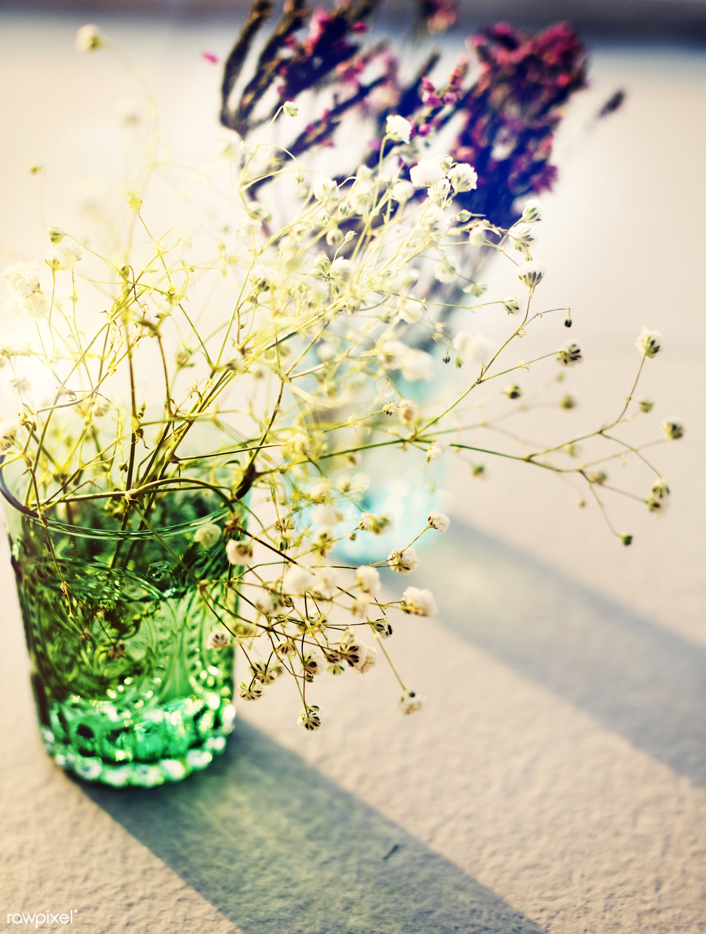 Flowers in glass vases - background, environment, flower, shadow, aroma, beautiful, celebration, environmental, fresh,...
