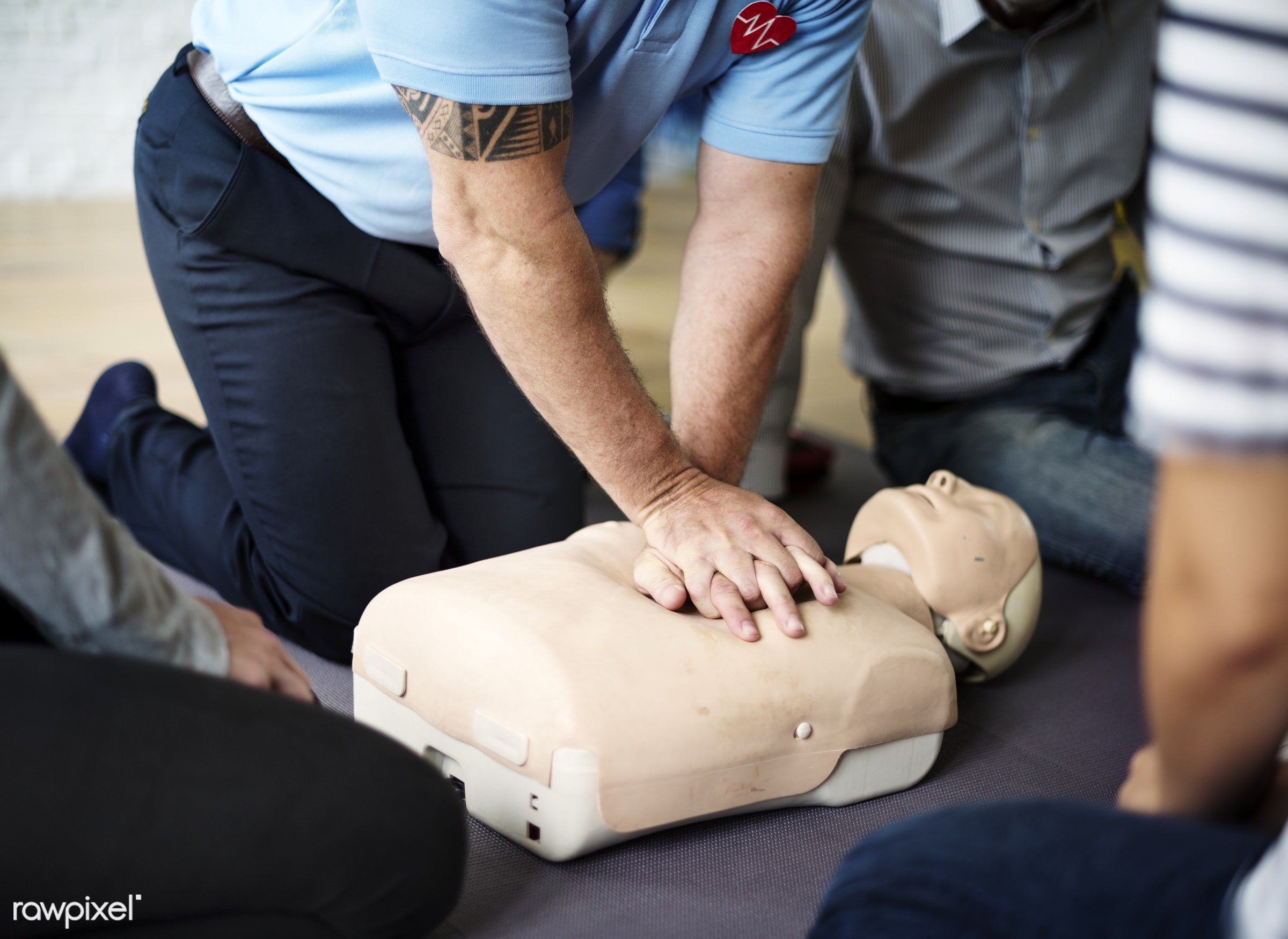 C - cpr training, person, knowledge, save, first aid, resuscitation, treatment, emergency, indoors, aid, people, emergency...