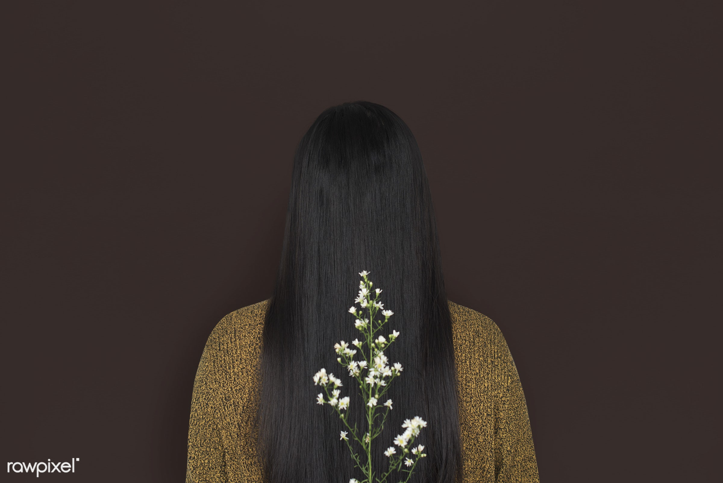 studio, person, people, girl, woman, casual, flower, rear view, isolated, flora, long hair, adult, portrait, charming,...