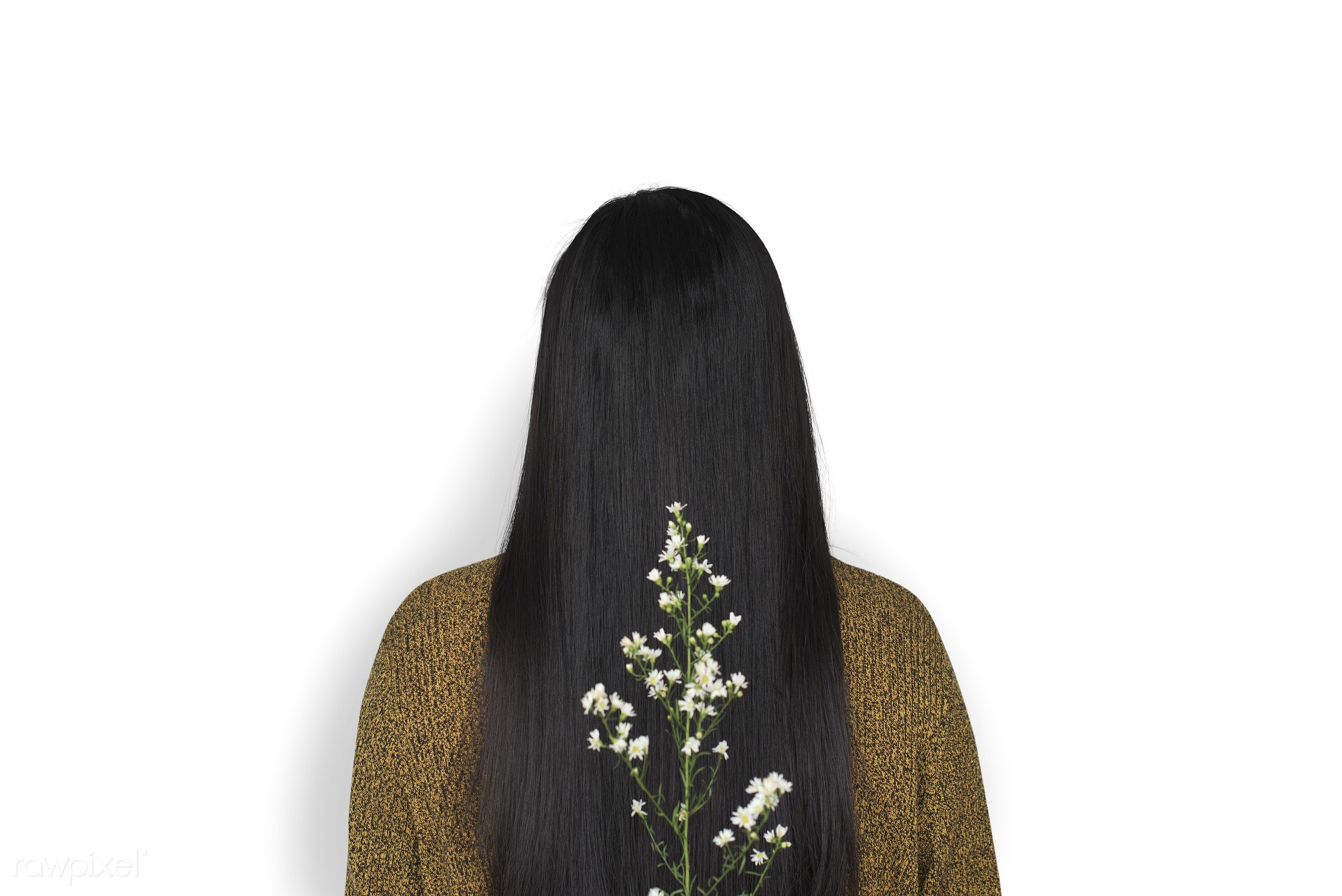 studio, person, isolated on white, people, girl, woman, casual, flower, rear view, isolated, flora, long hair, white, white...