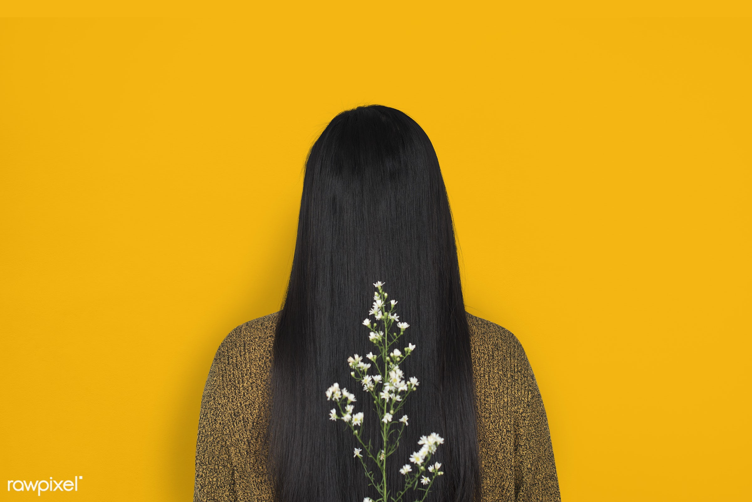 studio, person, yellow, people, girl, woman, casual, flower, rear view, orange, isolated, flora, long hair, adult, portrait...