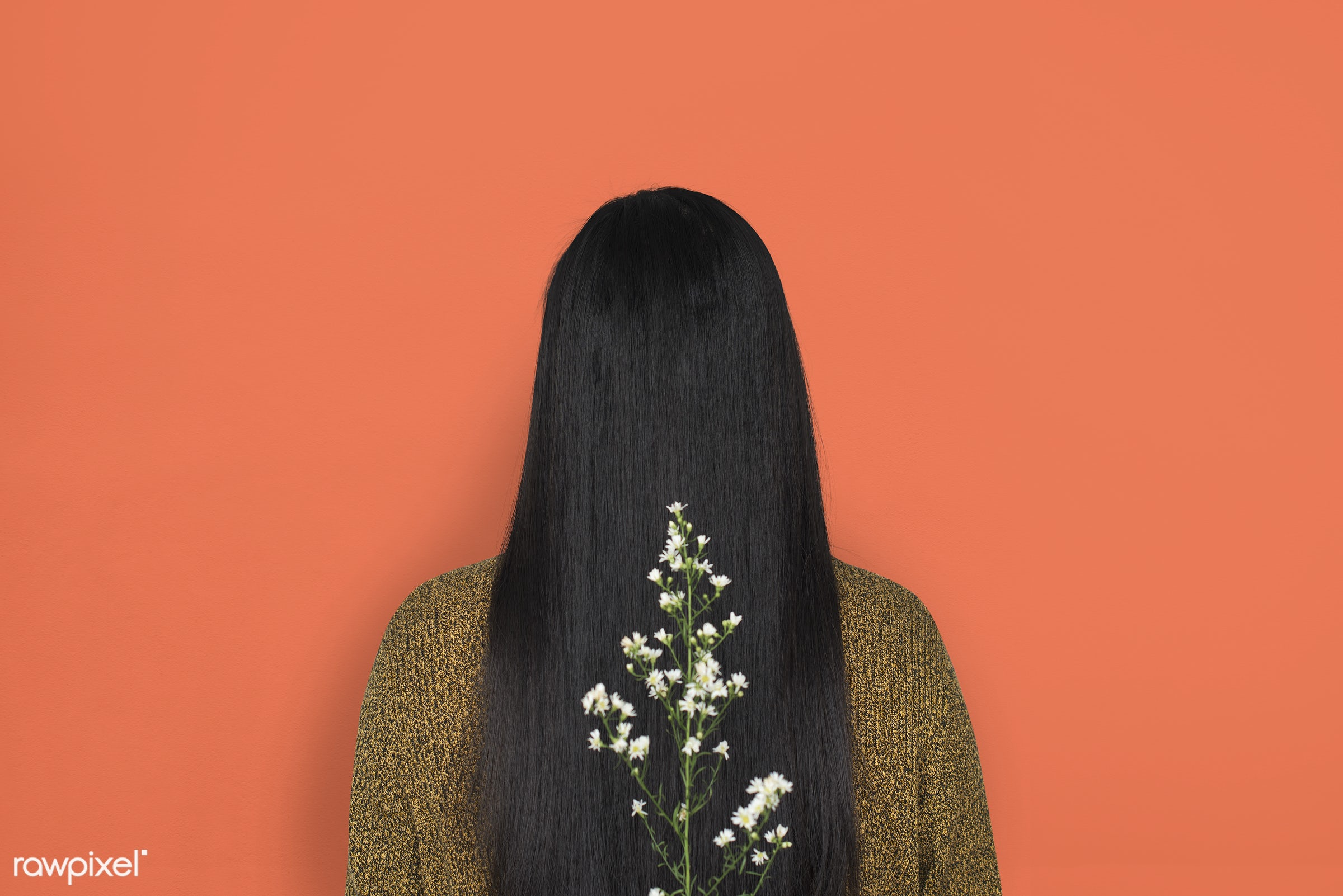 studio, person, people, girl, woman, casual, flower, rear view, orange, isolated, flora, long hair, adult, portrait,...