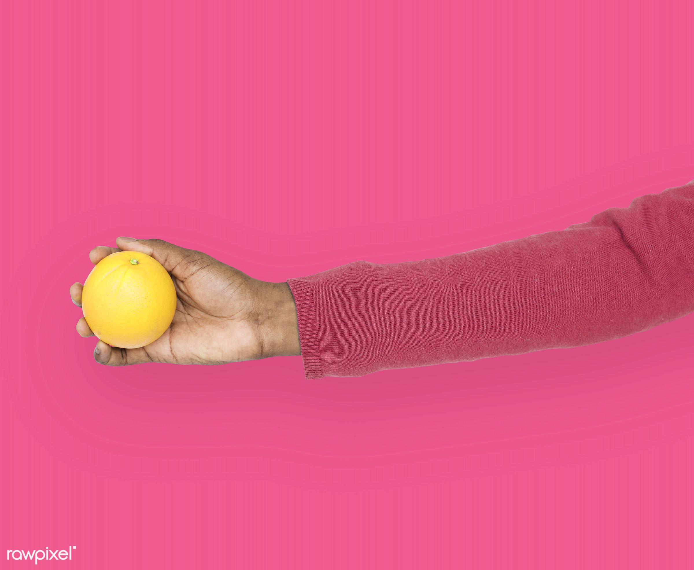 person, diet, race, hand, nature, wellness, lifestyle, showing, pink, orange, isolated, fruit, african descent, gesture,...